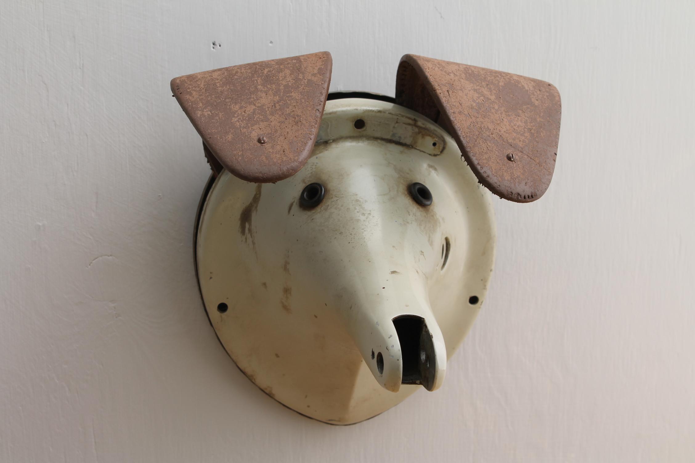 Dog Head