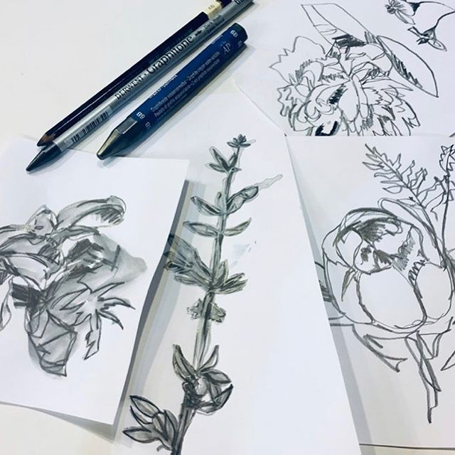 Wildflower Watercolor Workshop is coming up in three weeks! Join artist @justinelasdinartist for a day of drawing and painting inspired by summer blooms. Saturday August 24th. Sign up at link in bio. 🌱🌷🌾 #artworkshop #watercolor #drawingandpainting