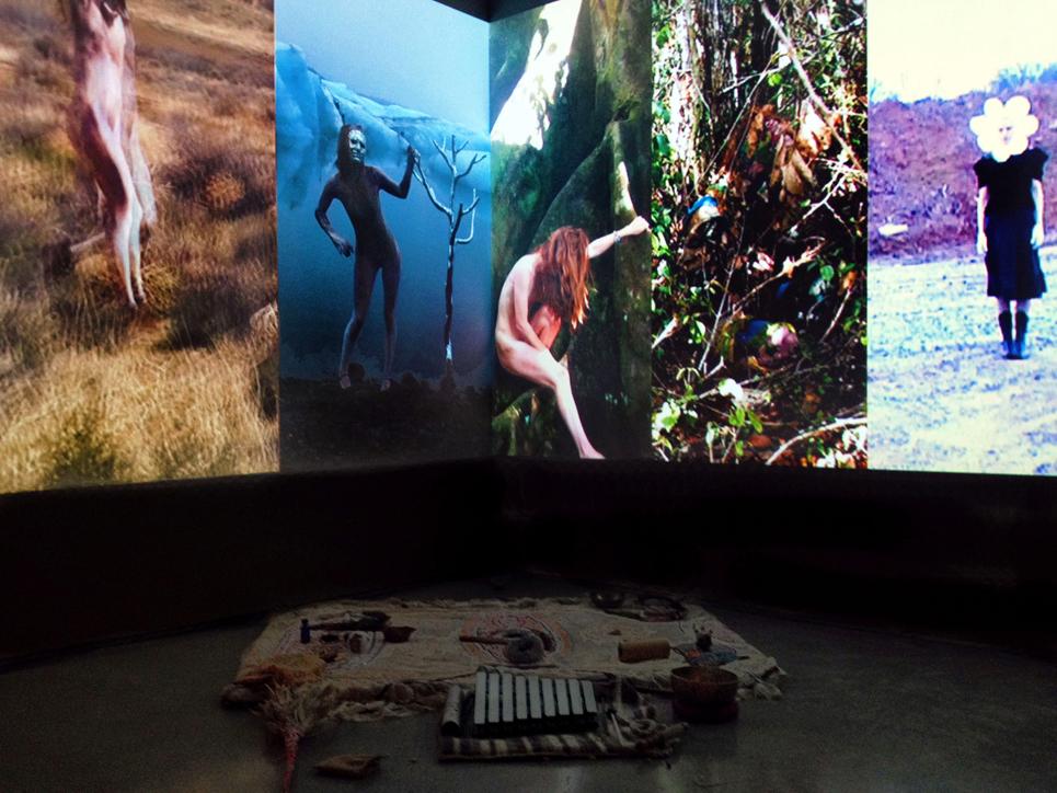 Culture Creatures installation at Zuckerman Museum, Kennesaw, GA