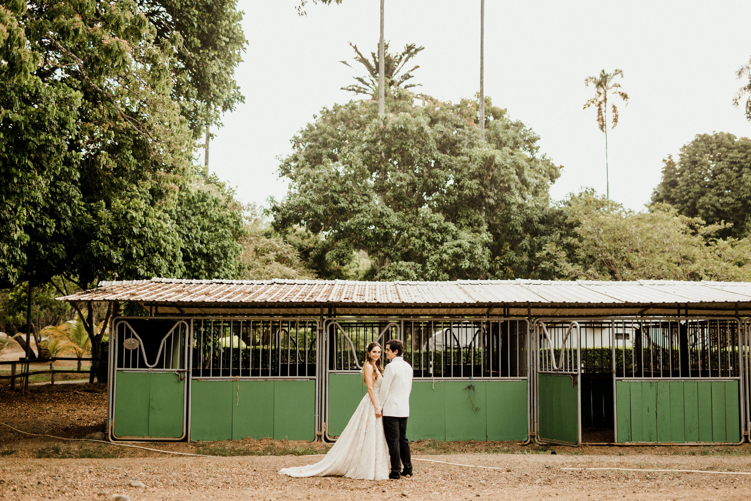 1 D+J Tropical Wedding-117.jpg