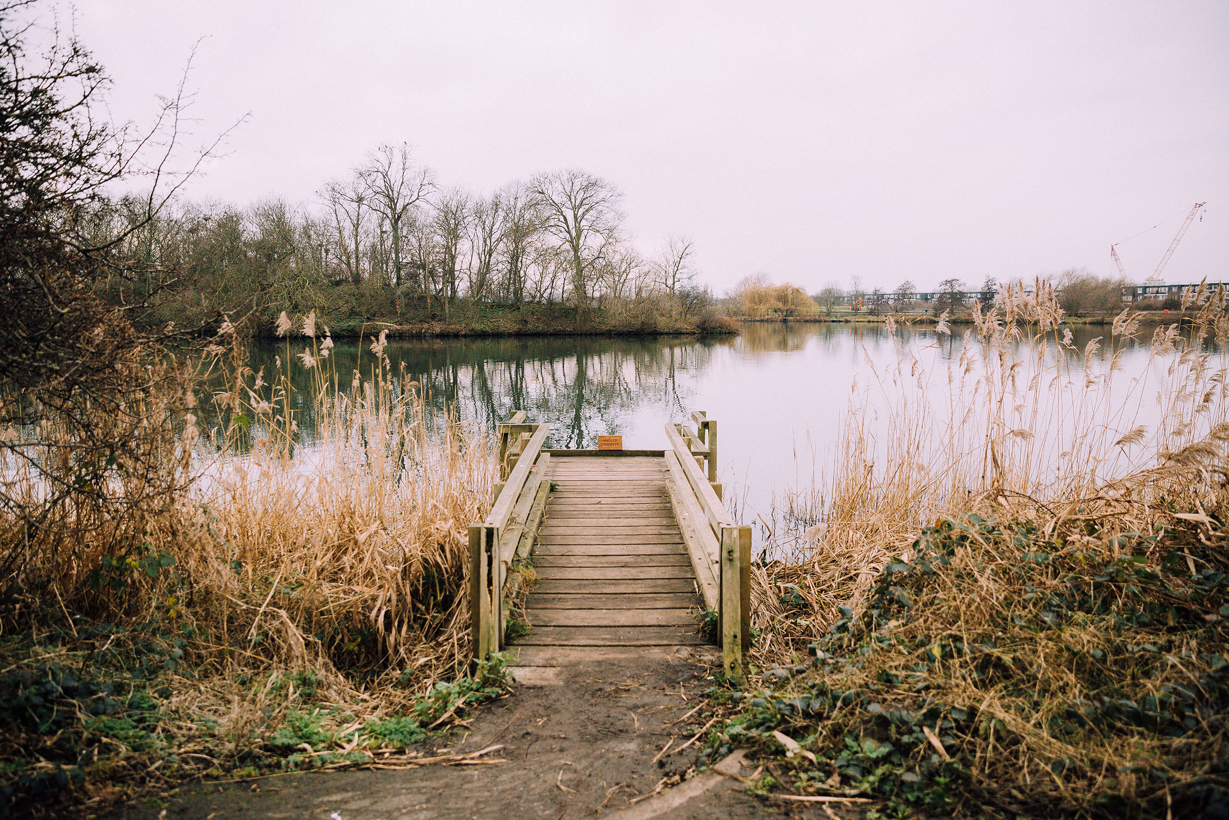 Walthamstow_Wetlands_Jan18-(7-of-15).jpg