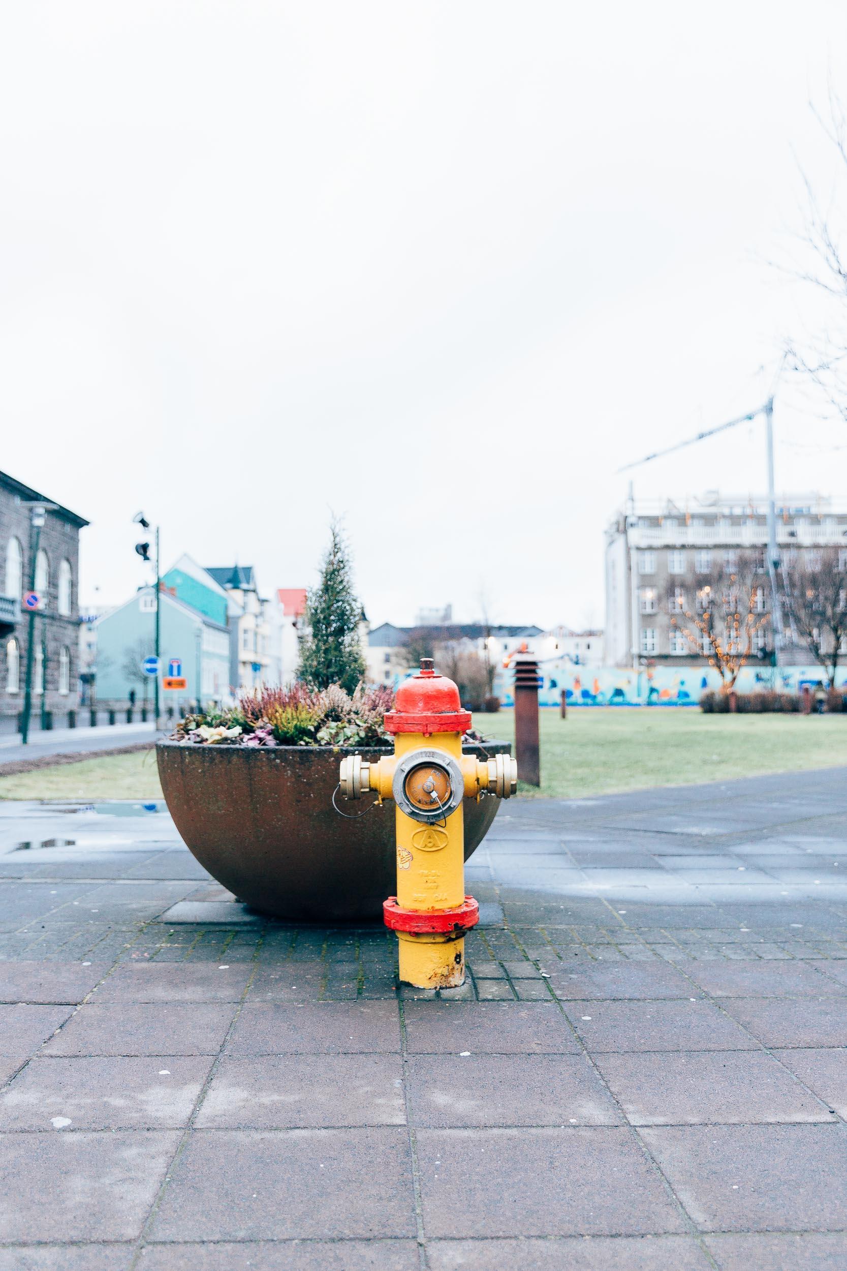 02_2019_Iceland-12.jpg