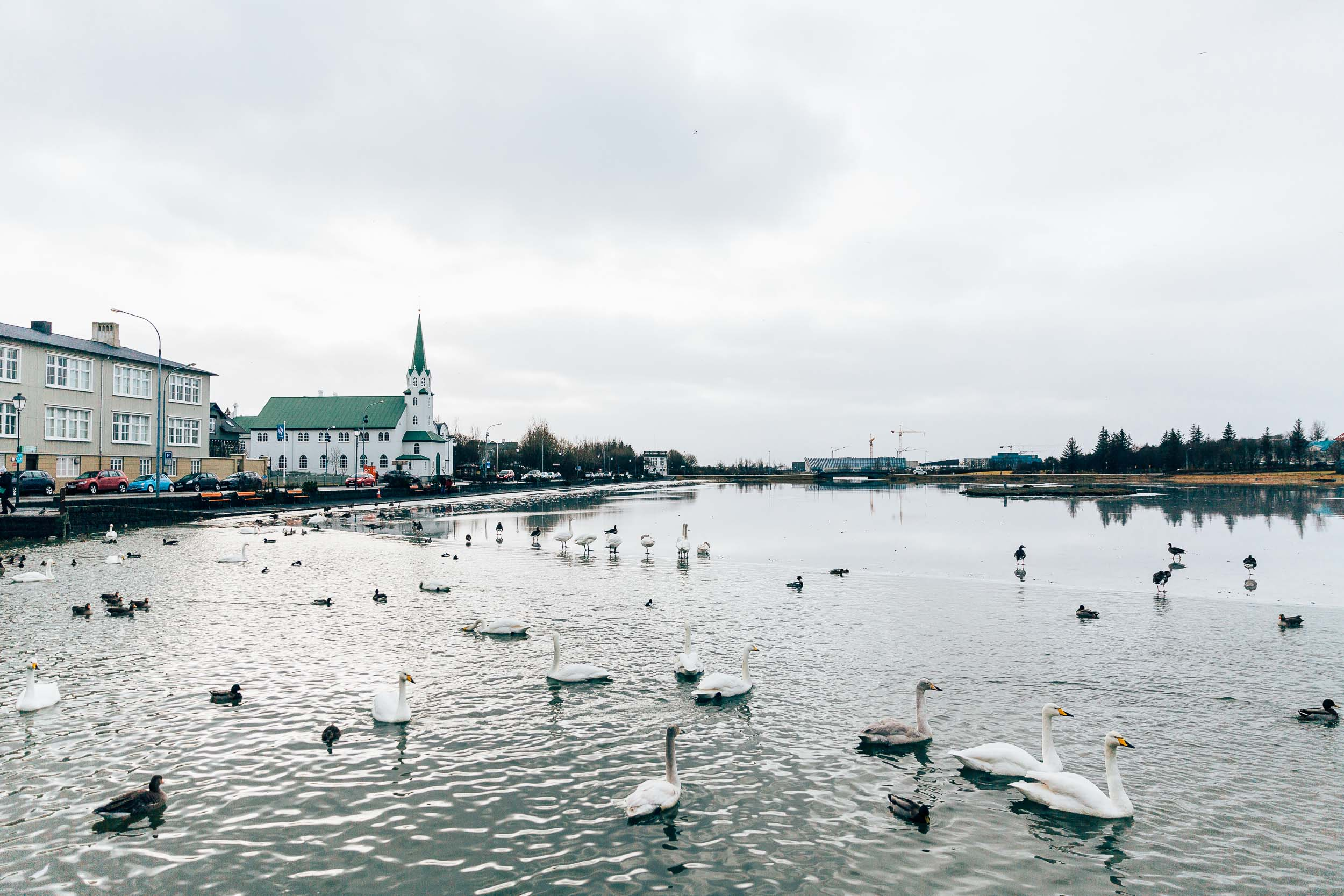 02_2019_Iceland-63.jpg