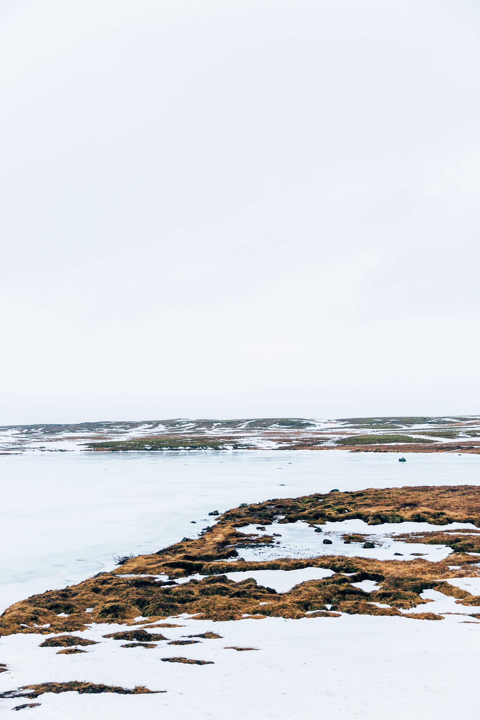 02_2019_Iceland-248.jpg