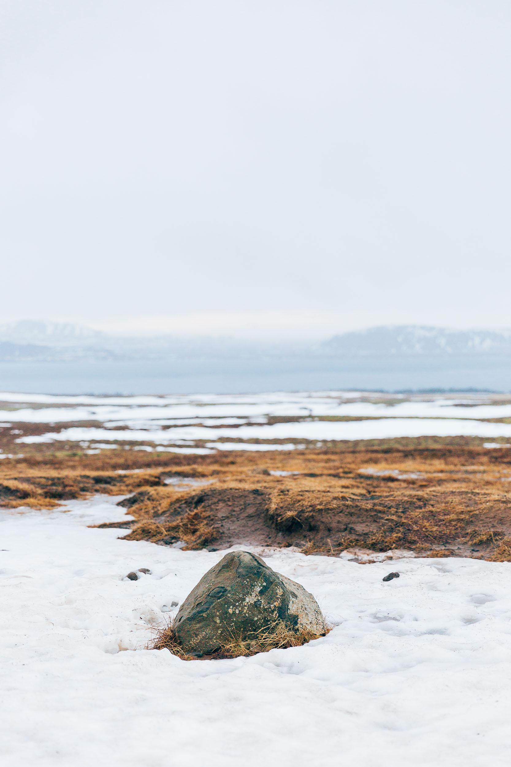 02_2019_Iceland-258.jpg