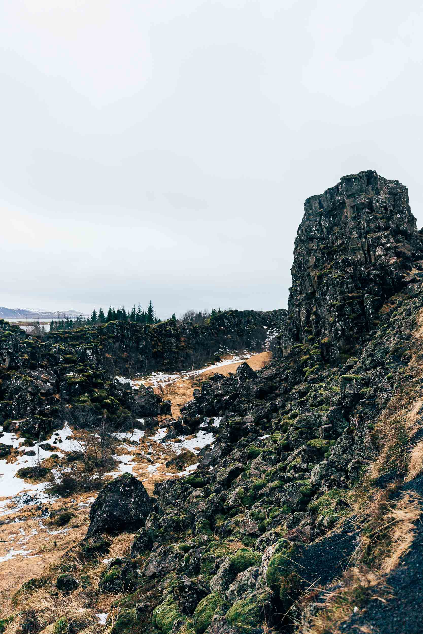 02_2019_Iceland-264.jpg