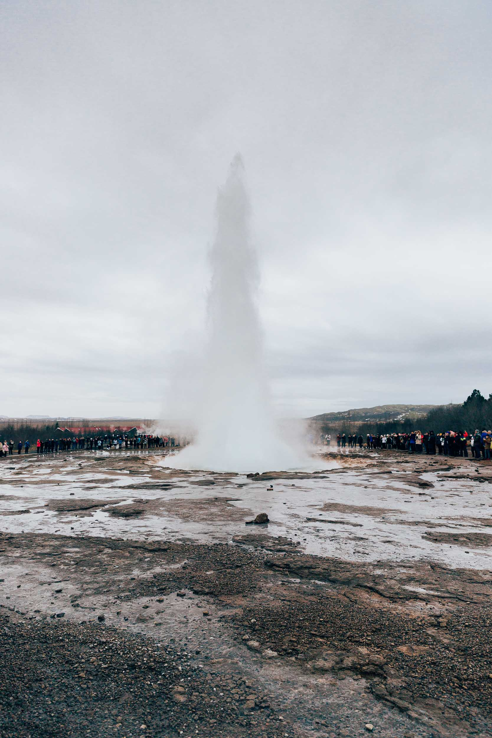 02_2019_Iceland-305.jpg