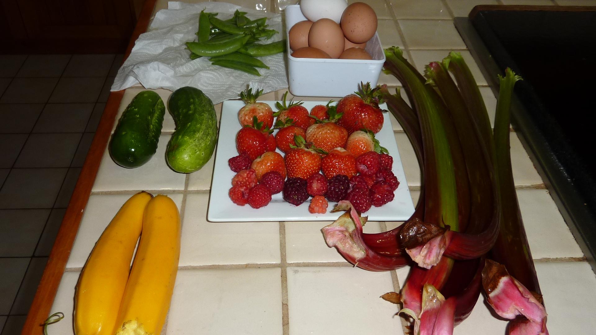 Home-grown Produce at Mokoia Downs.JPG