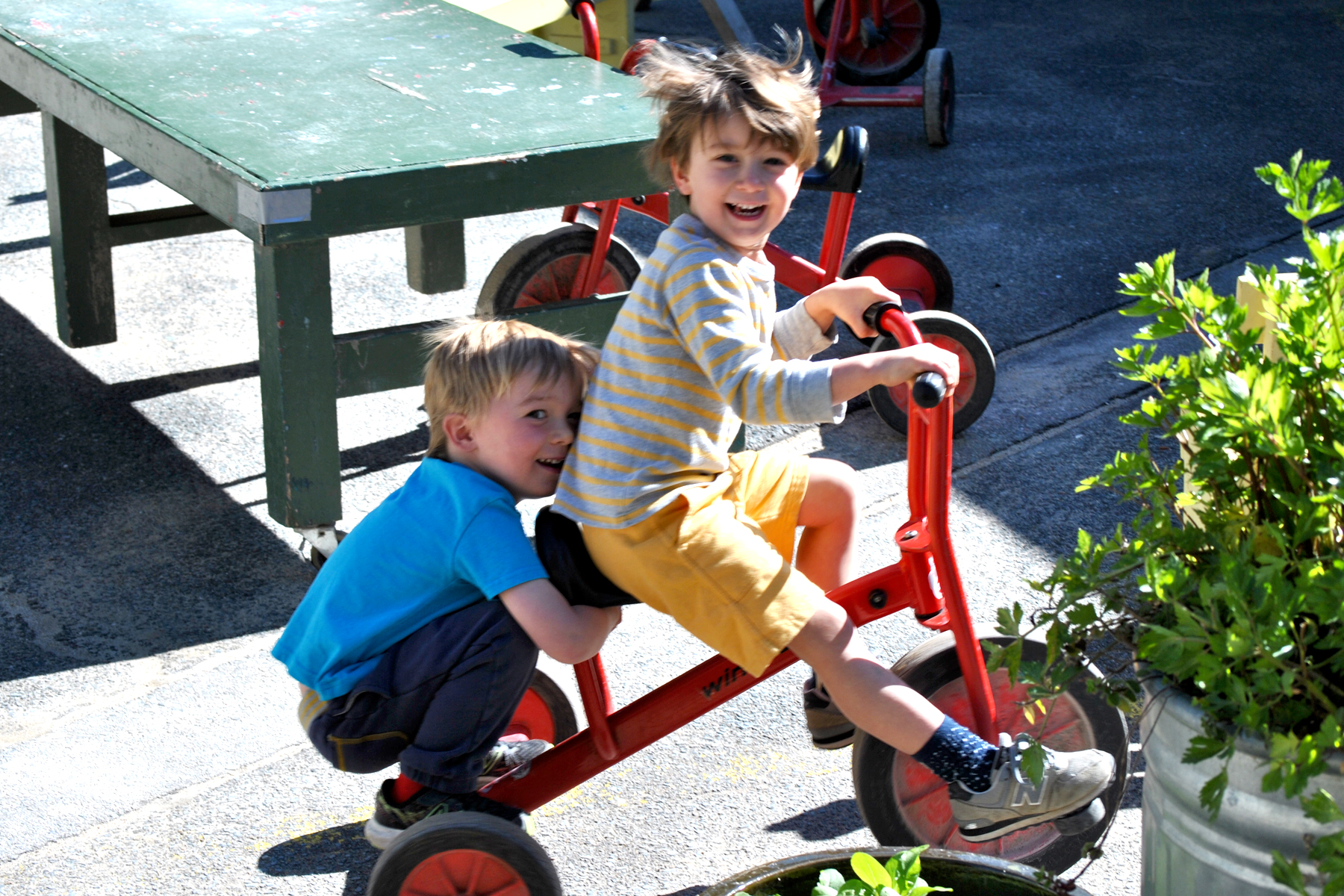 Tricycles are a big hit in the outdoor Classroom.