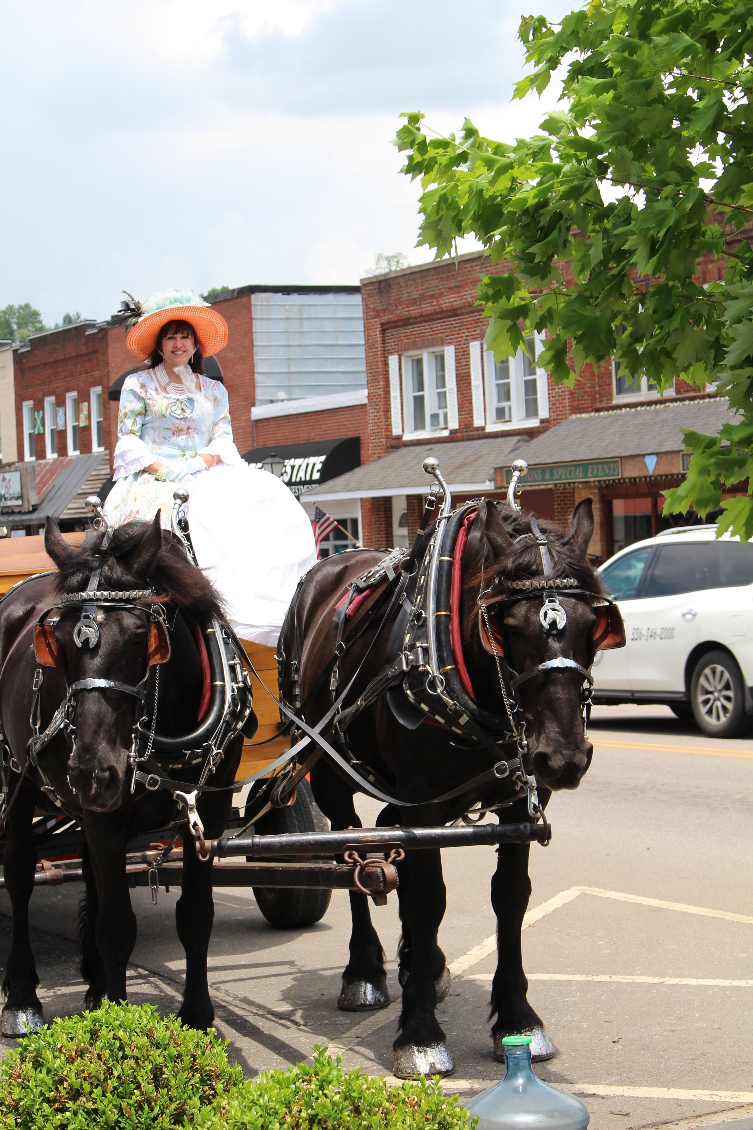 You can even go for a carriage ride in West Jefferson NC