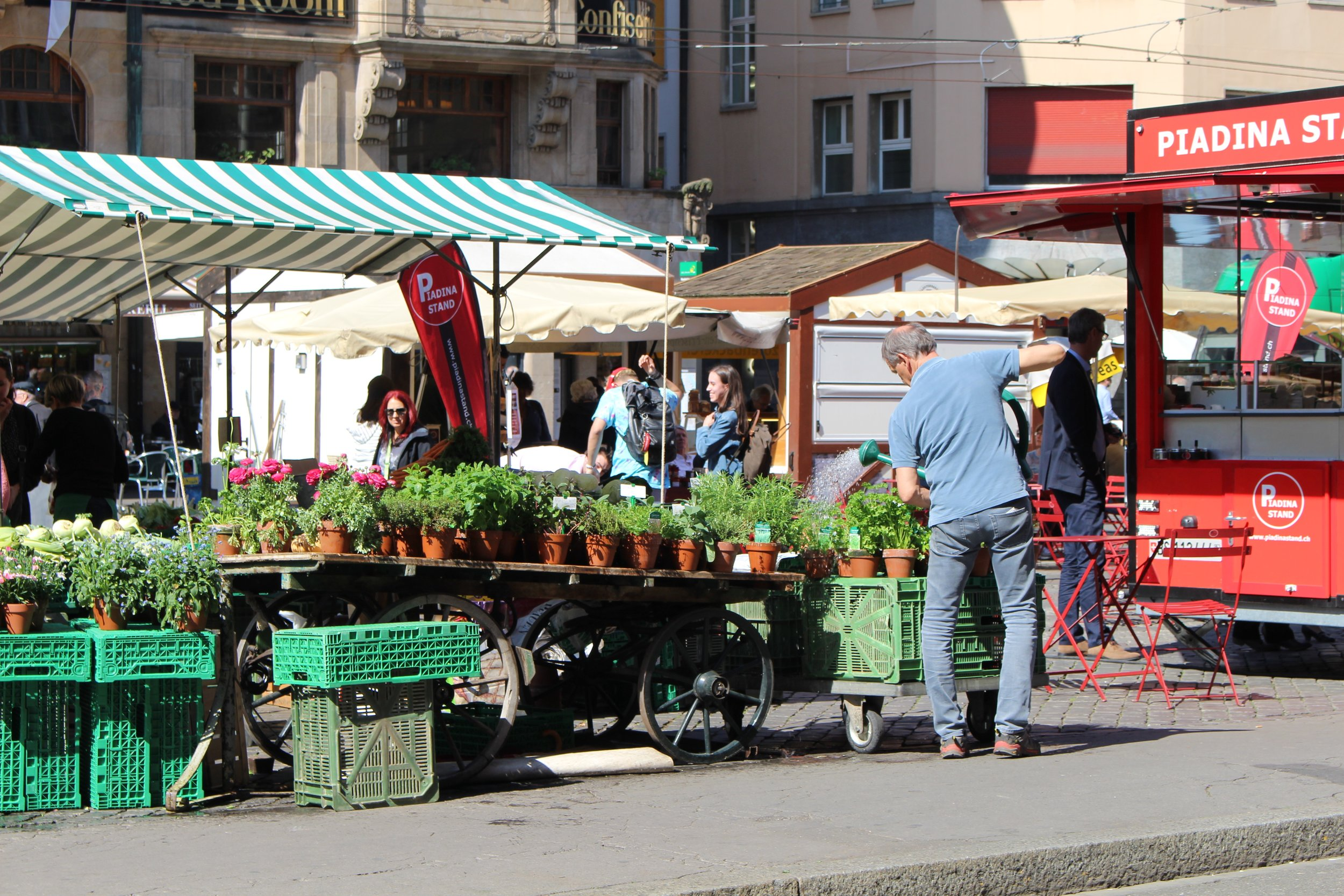 Vender Watering plants at the Farmers Market in Basel, Switzerland