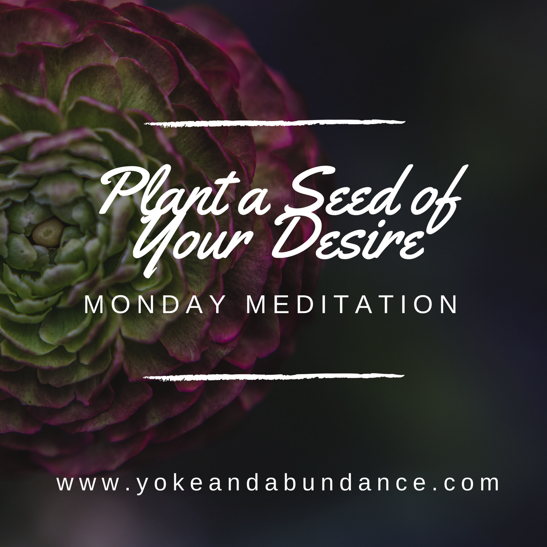 Monday Meditation: Planting a Seed of Your Desire