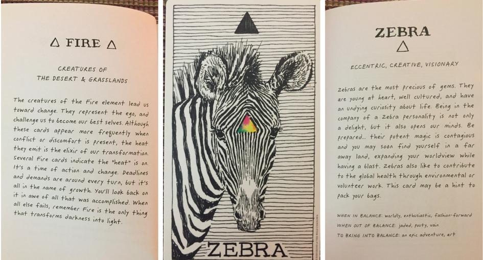 Zebra Card.jpg