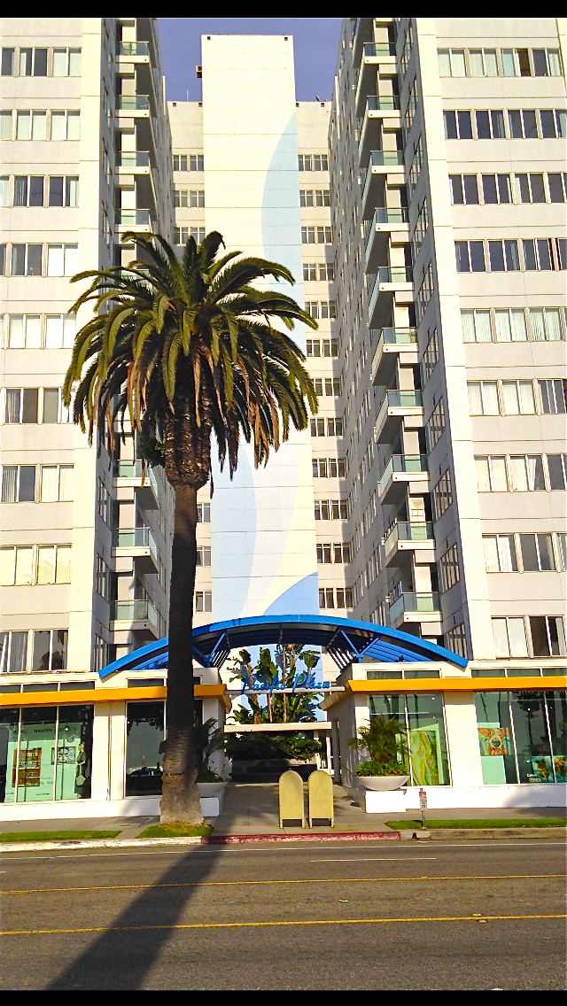 Santa-Monica-Street-shot-of-palm-tree+hotel.png