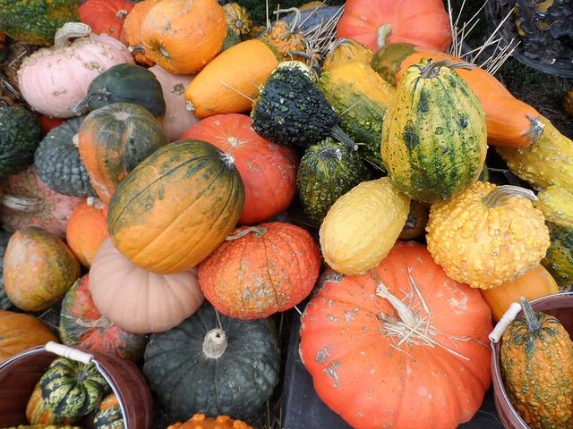 pumpkin-72336_640.jpg
