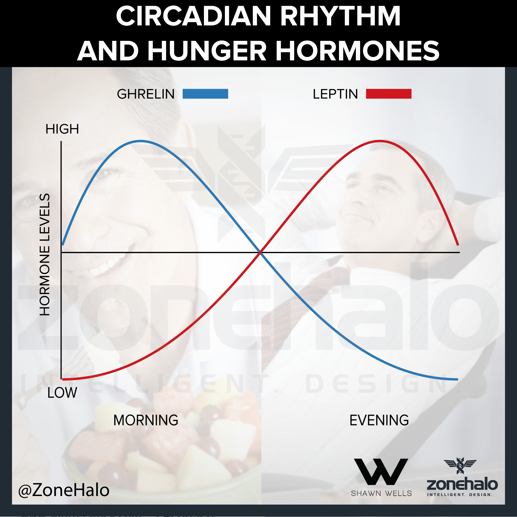 Circadian  Hunger Hormones