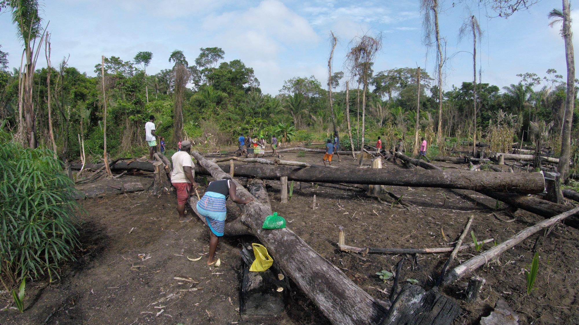 _village community rice planting_  film still.jpg