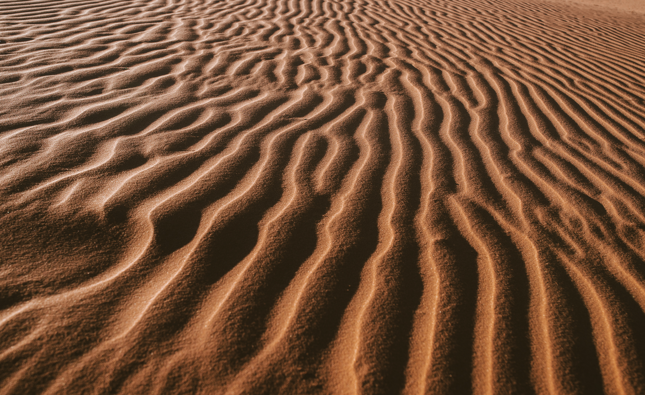 ©Isaiah & Taylor Photography - Los Angeles Destination Photographer - Lifestyle Commercial Corral Sand Dunes-10.jpg