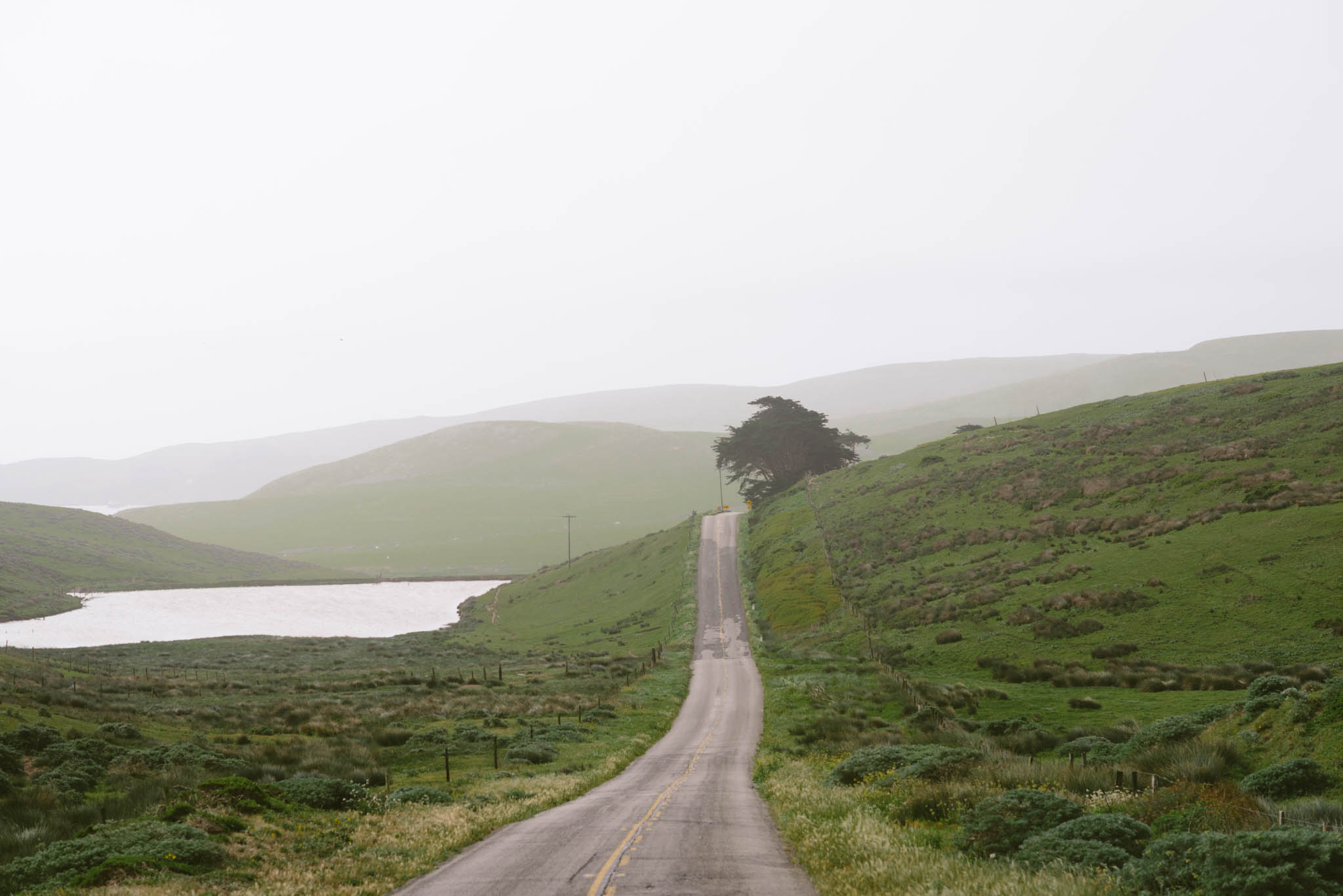 ©The Ryans Photography - Point Reyes, California-31.jpg
