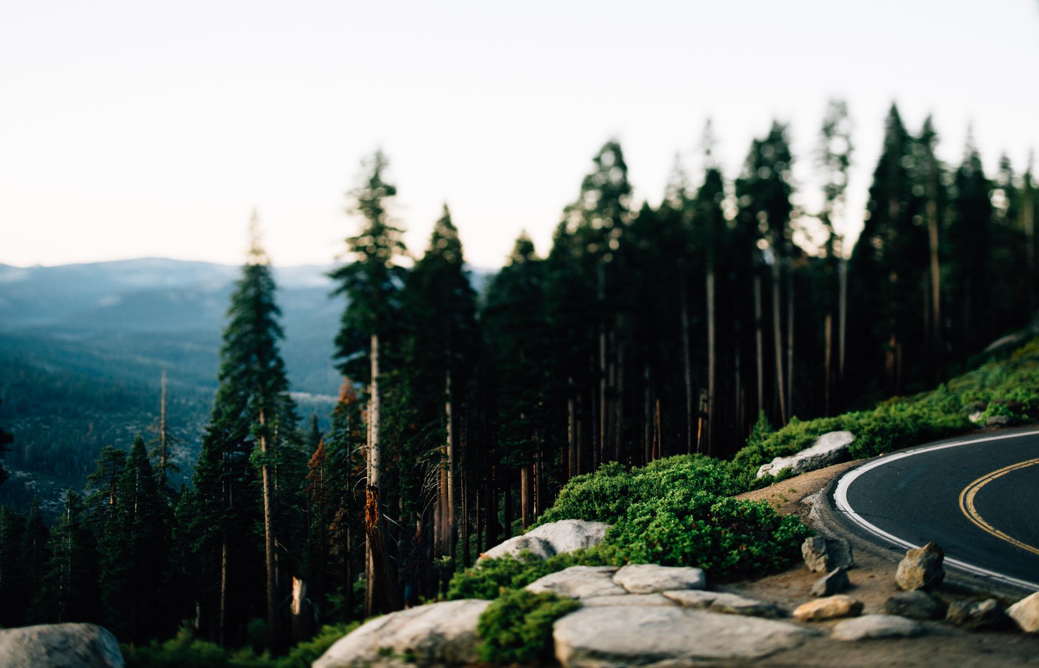 ©Isaiah & Taylor Photography - Los Angeles Wedding Photographer - Yosemite -019.jpg