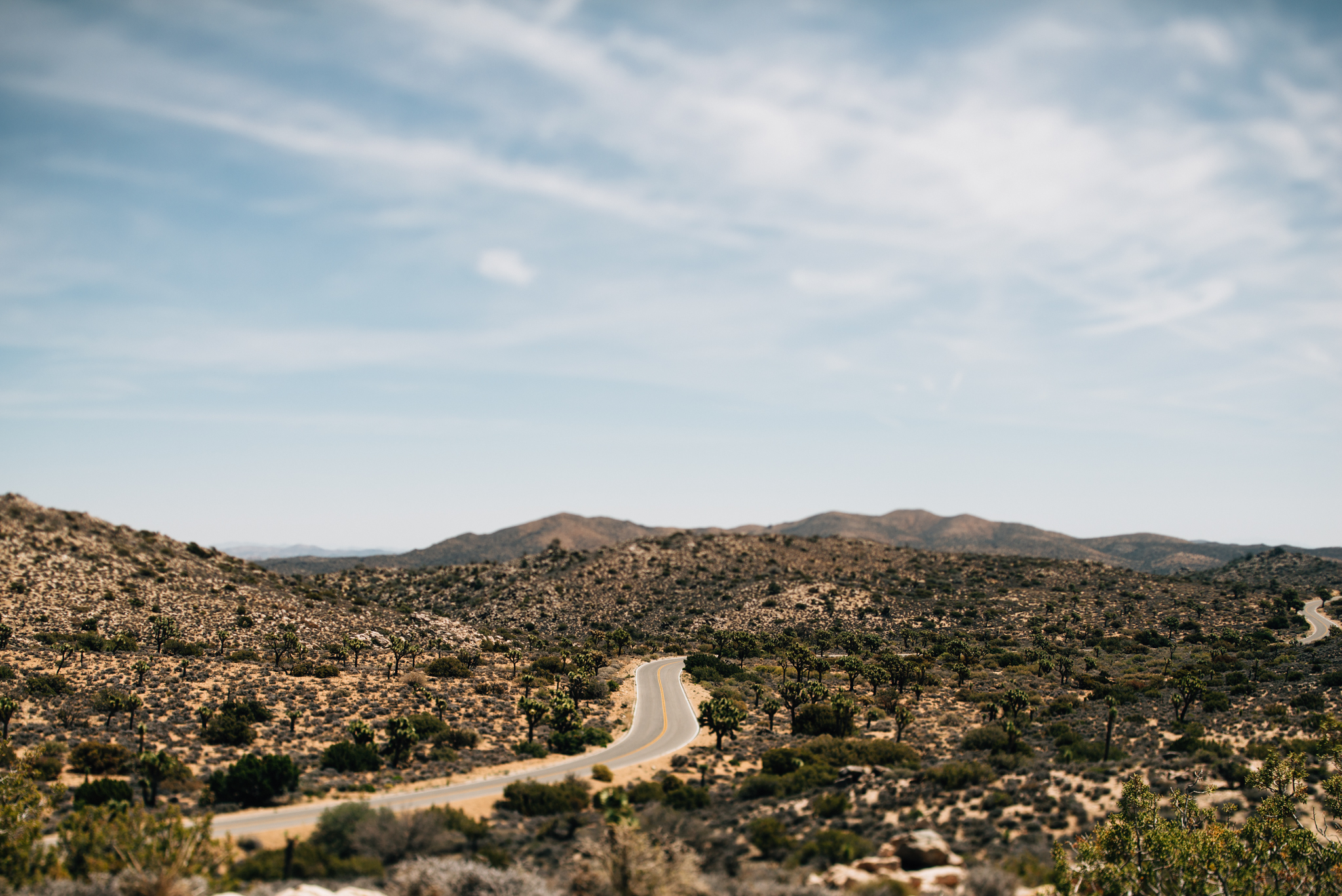 ©The Ryans Photography - Los Angeles Travel - Joshua Tree National Park-006.jpg