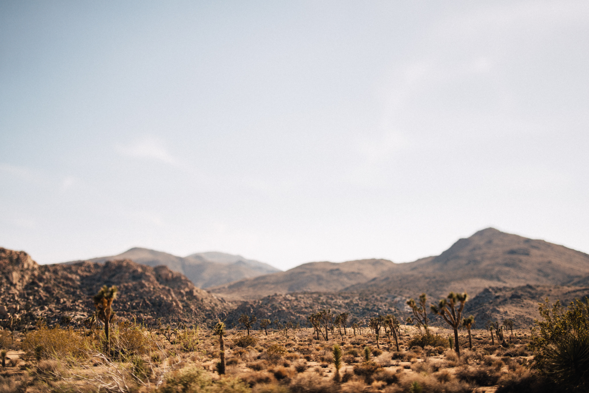©The Ryans Photography - Los Angeles Travel - Joshua Tree National Park-007.jpg