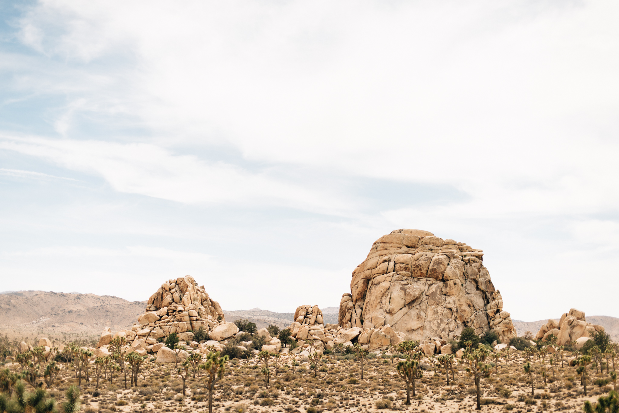 ©The Ryans Photography - Los Angeles Travel - Joshua Tree National Park-008.jpg