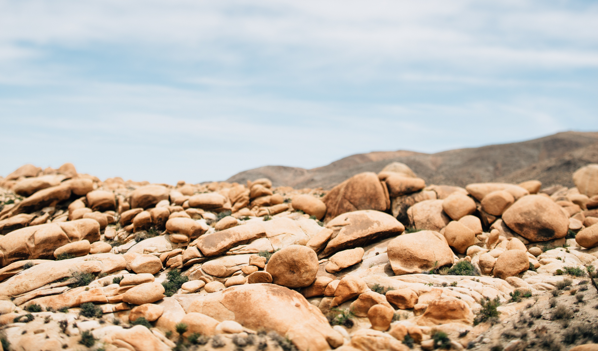 ©The Ryans Photography - Los Angeles Travel - Joshua Tree National Park-012.jpg