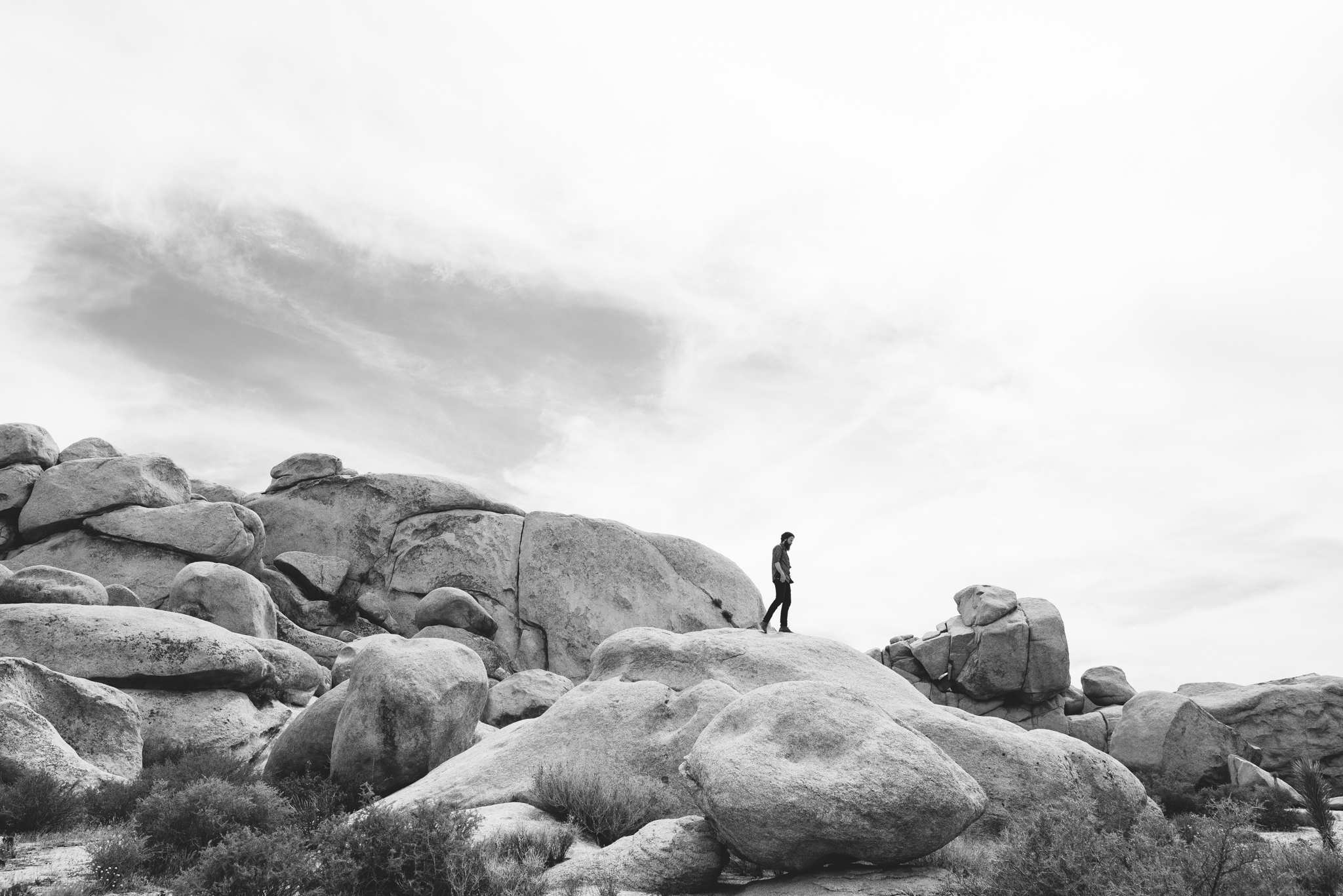 ©The Ryans Photography - Los Angeles Travel - Joshua Tree National Park-016.jpg