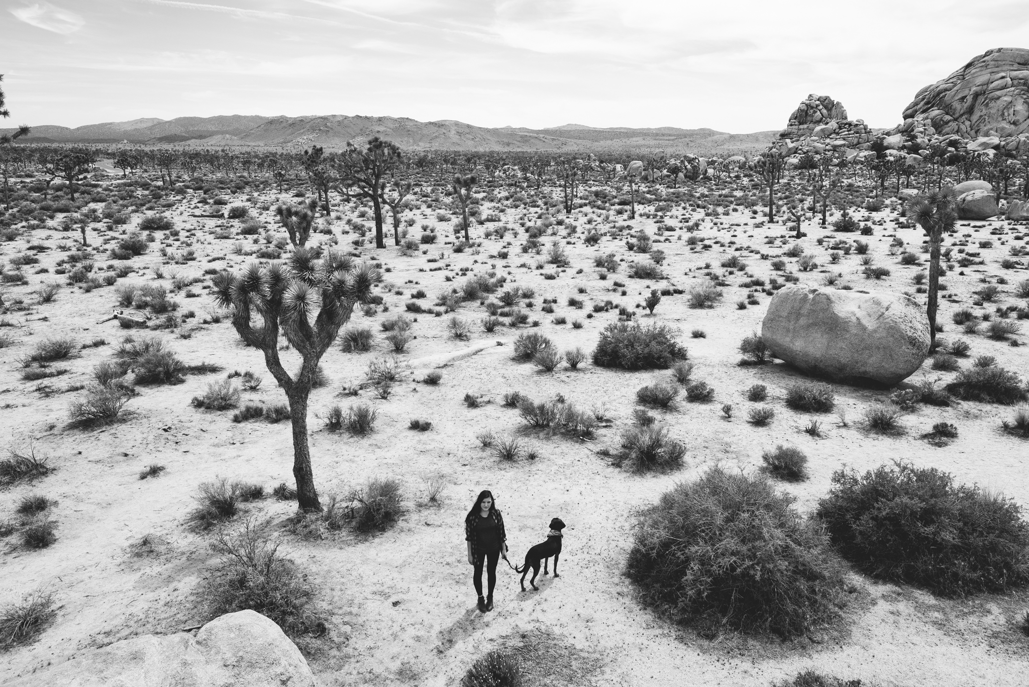 ©The Ryans Photography - Los Angeles Travel - Joshua Tree National Park-026.jpg