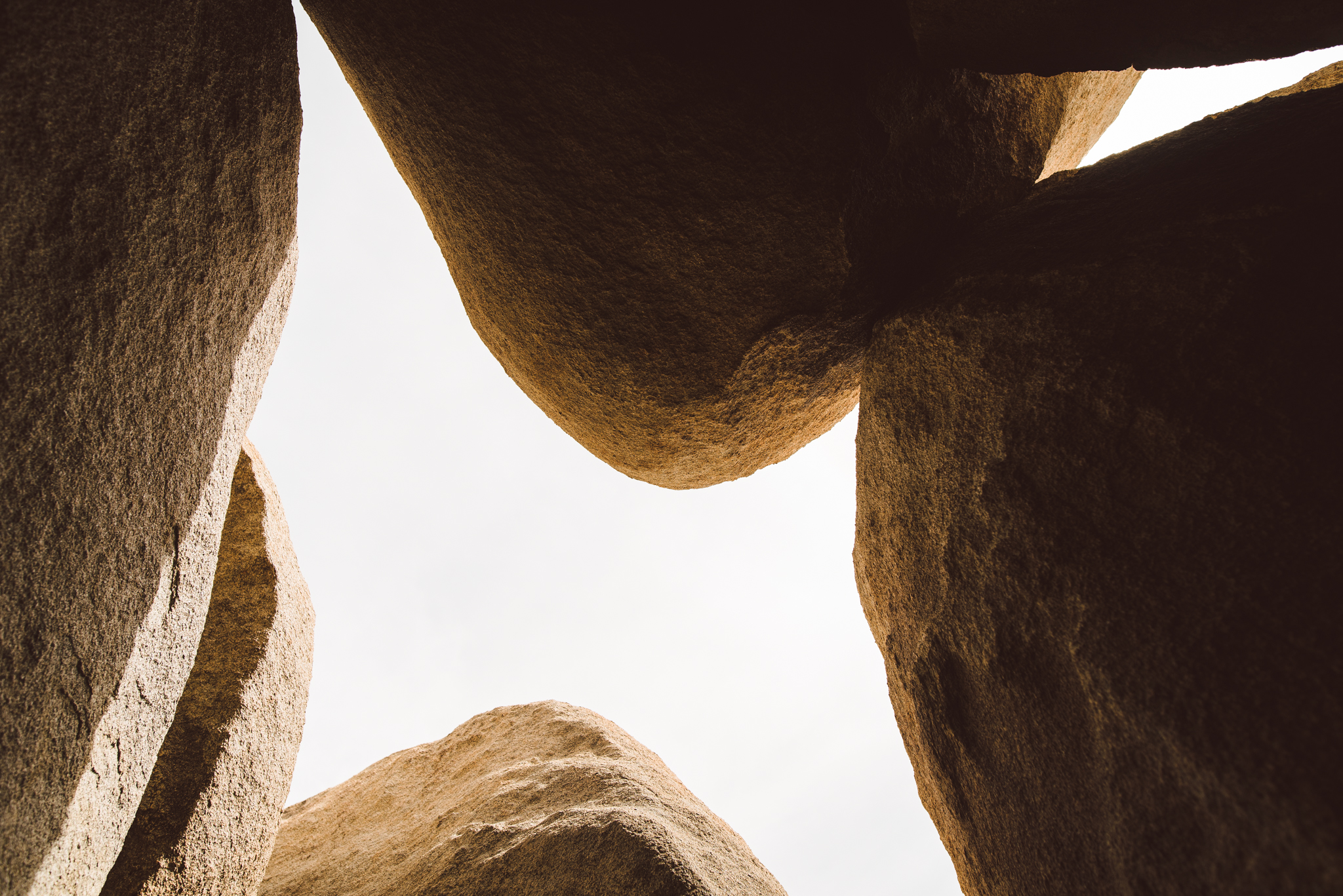 ©The Ryans Photography - Los Angeles Travel - Joshua Tree National Park-030.jpg