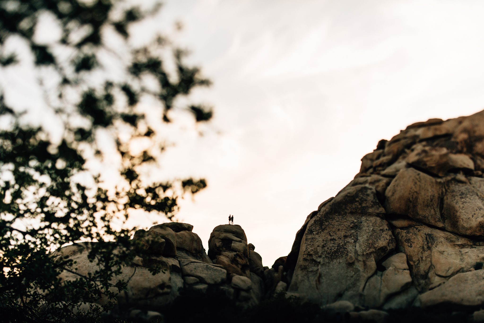 ©The Ryans Photography - Los Angeles Travel - Joshua Tree National Park-041.jpg