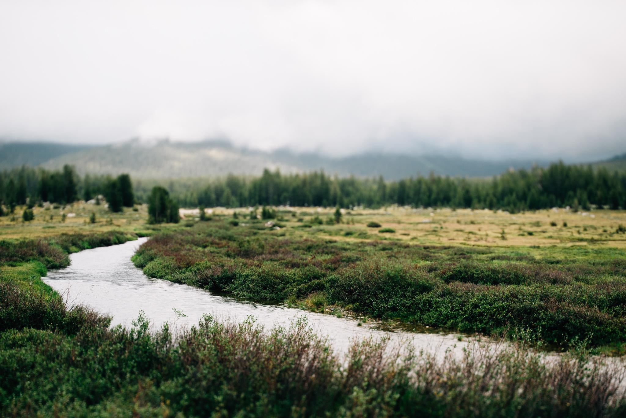 ©The Ryans Photography - Los Angeles Travel - Tuolomne Meadows Yosemite-013.jpg