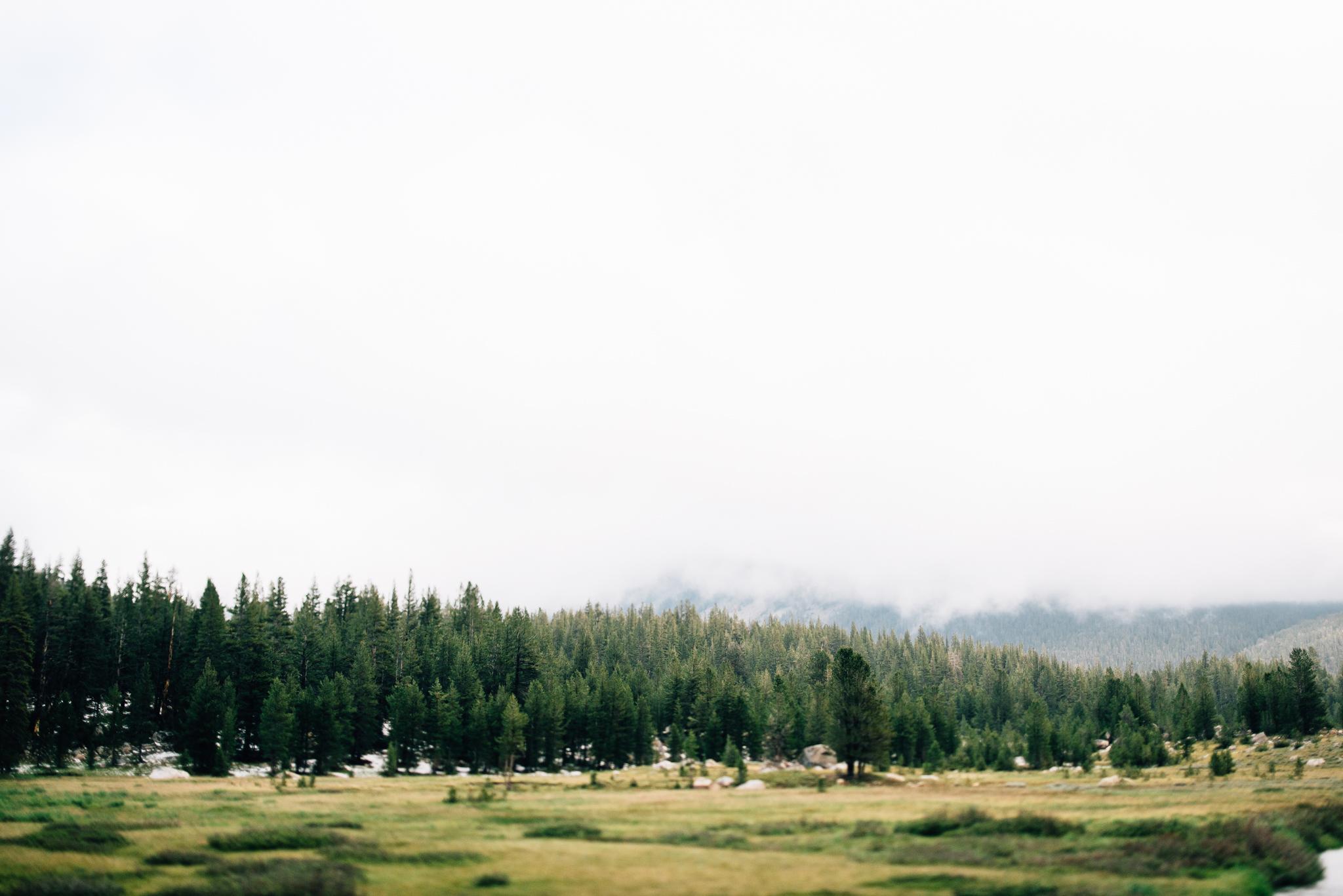 ©The Ryans Photography - Los Angeles Travel - Tuolomne Meadows Yosemite-014.jpg