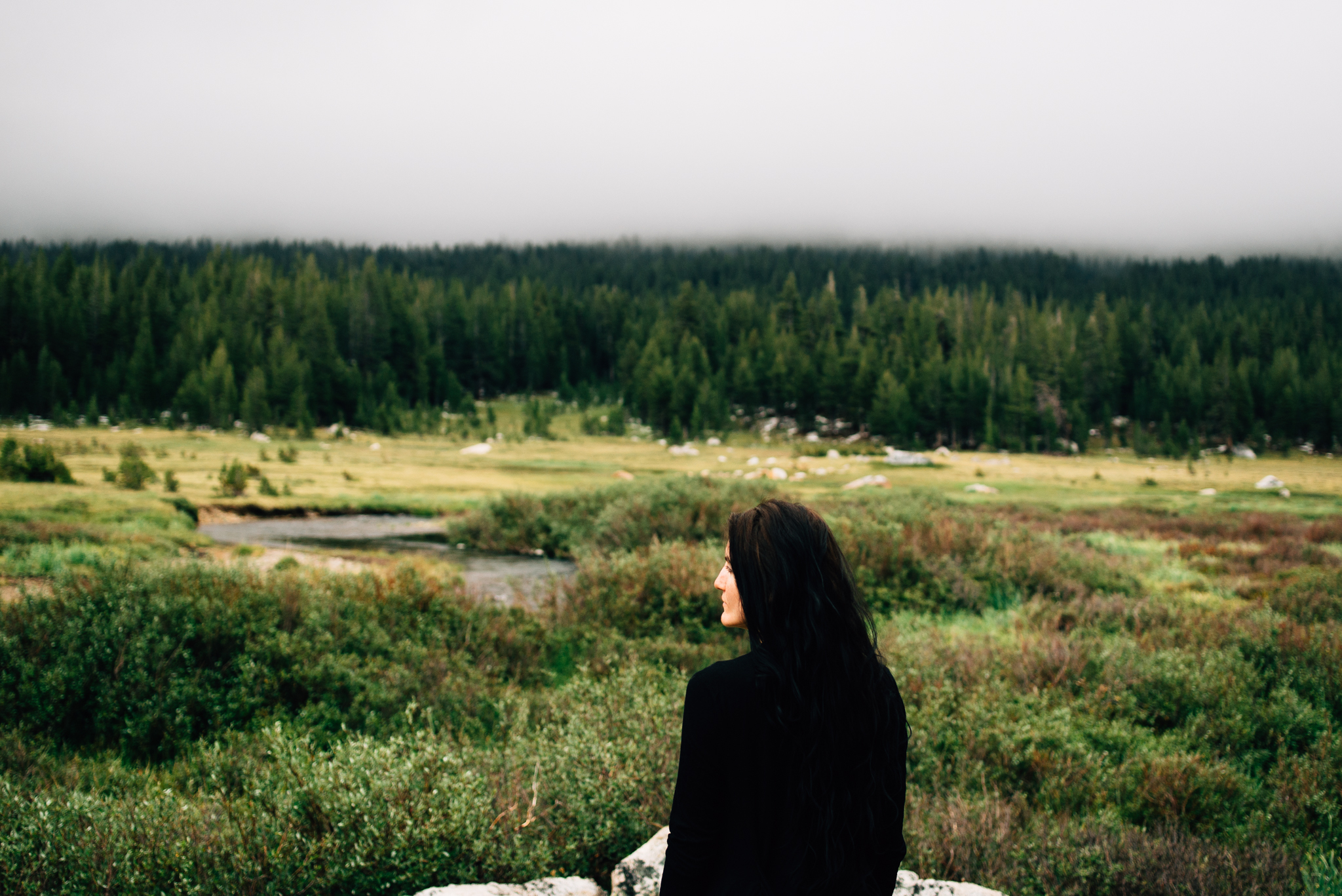 ©The Ryans Photography - Los Angeles Travel - Tuolomne Meadows Yosemite-021.jpg