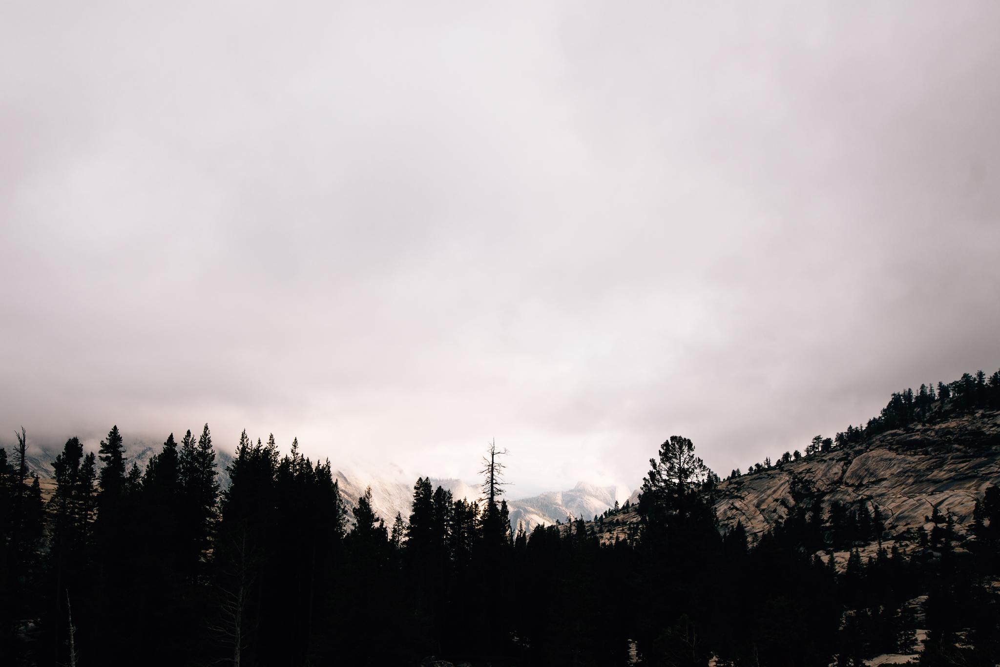 ©The Ryans Photography - Los Angeles Travel - Tuolomne Meadows Yosemite-024.jpg