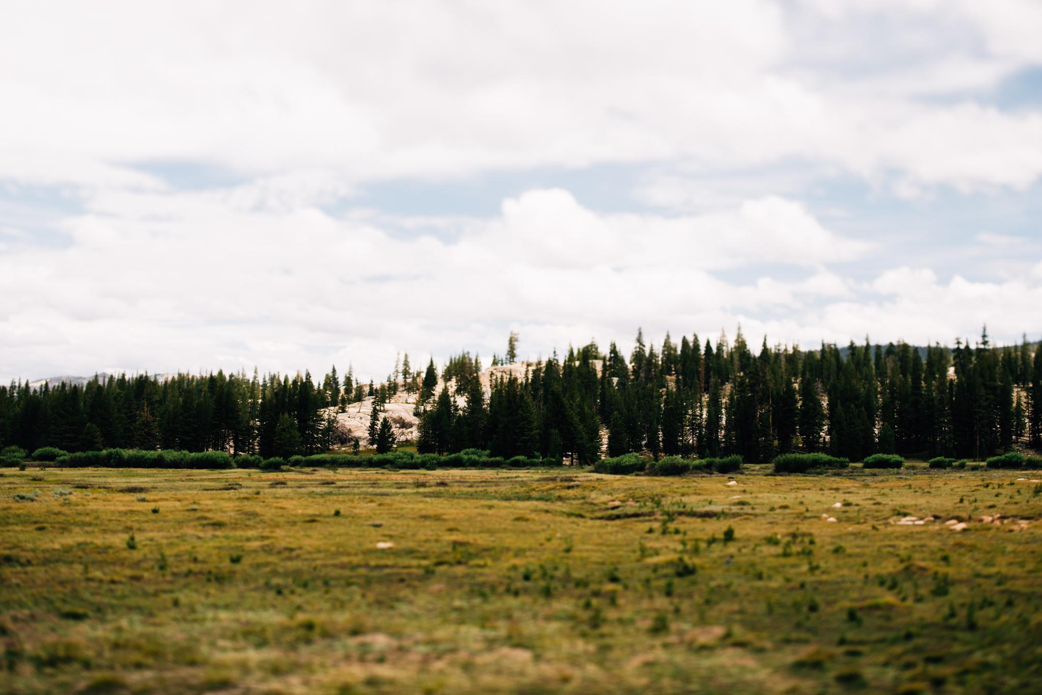 ©The Ryans Photography - Los Angeles Travel - Tuolomne Meadows Yosemite-025.jpg