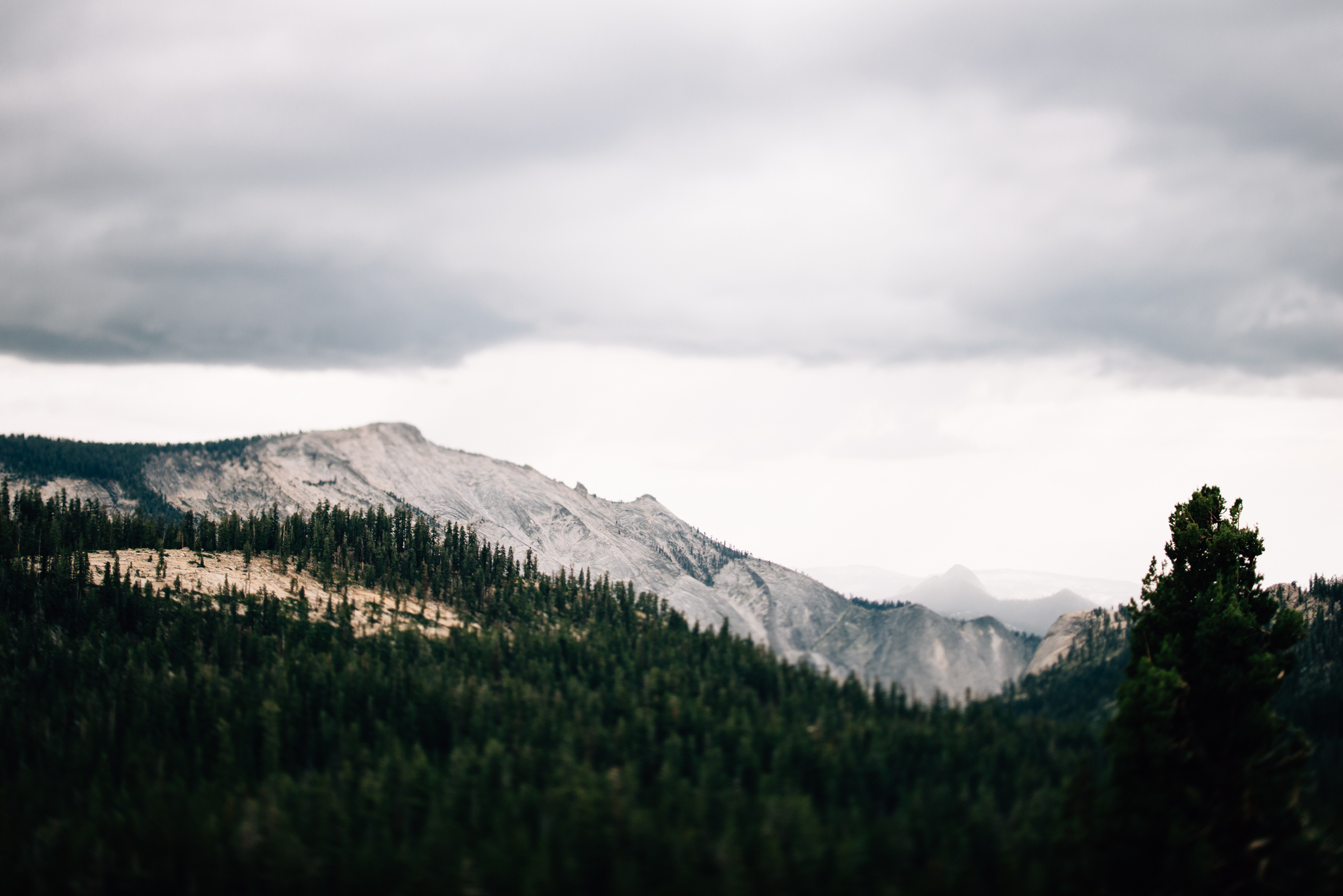 ©The Ryans Photography - Los Angeles Travel - Tuolomne Meadows Yosemite-027.jpg