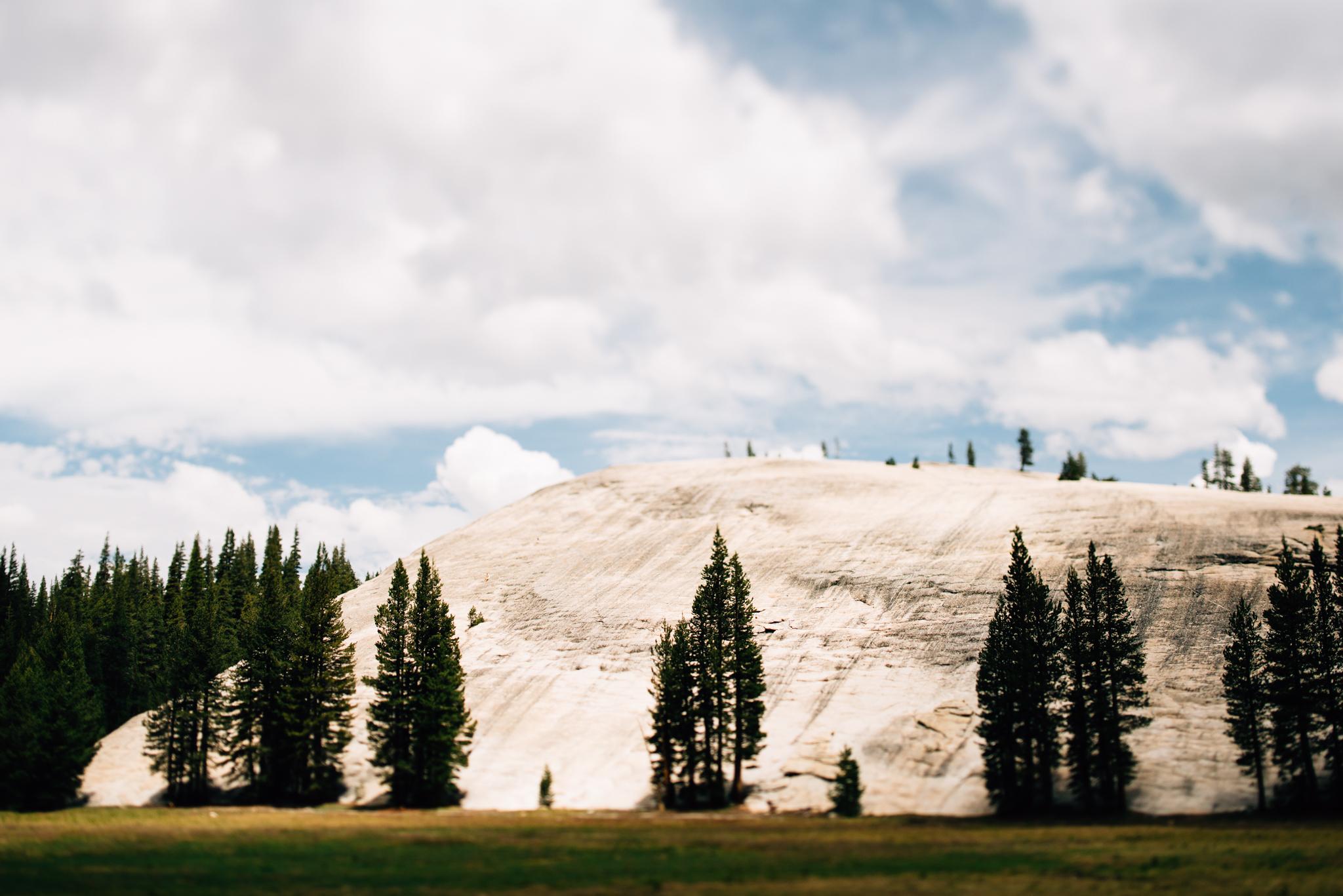 ©The Ryans Photography - Los Angeles Travel - Tuolomne Meadows Yosemite-026.jpg