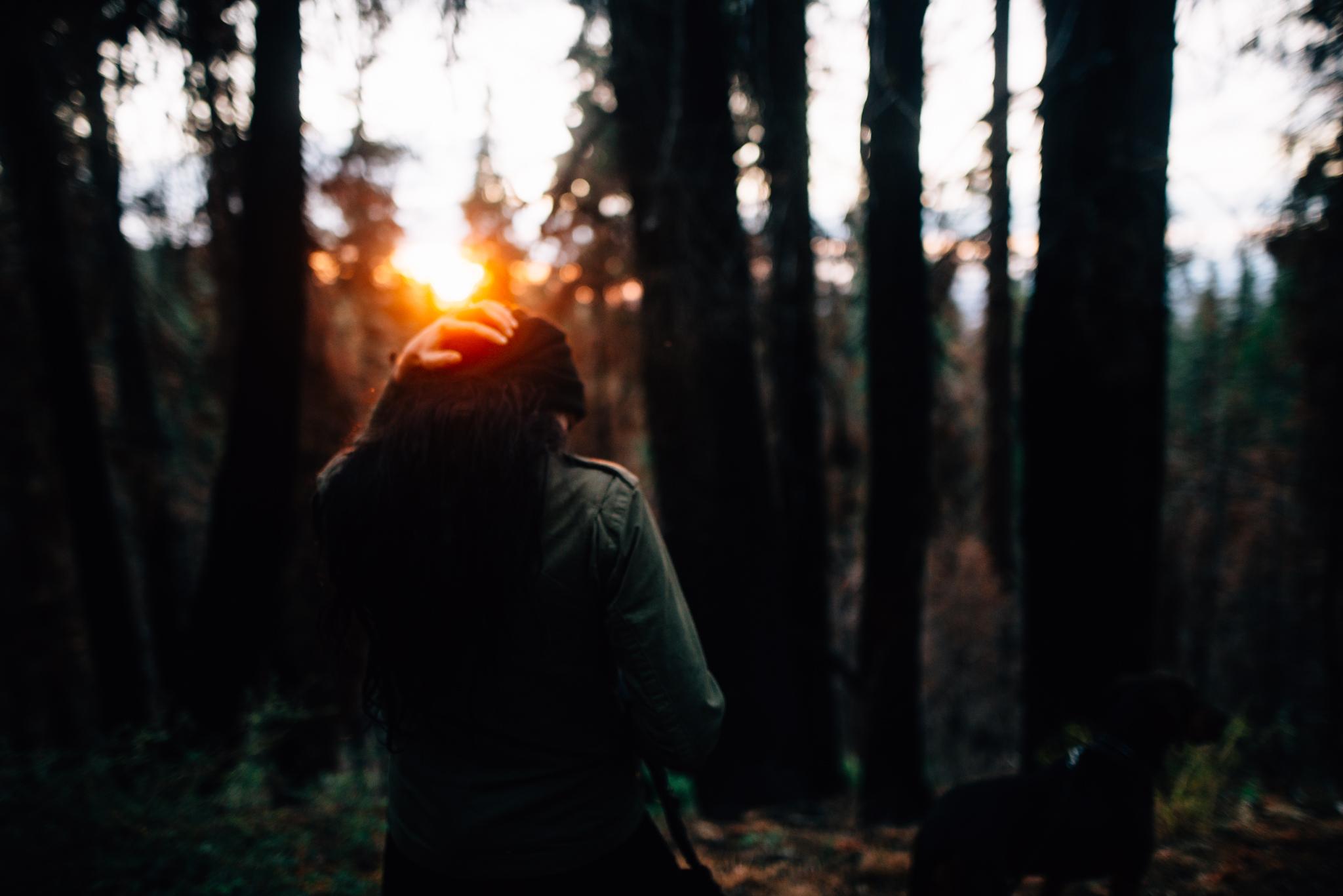 ©The Ryans Photography - Los Angeles Travel - Tuolomne Meadows Yosemite-042.jpg