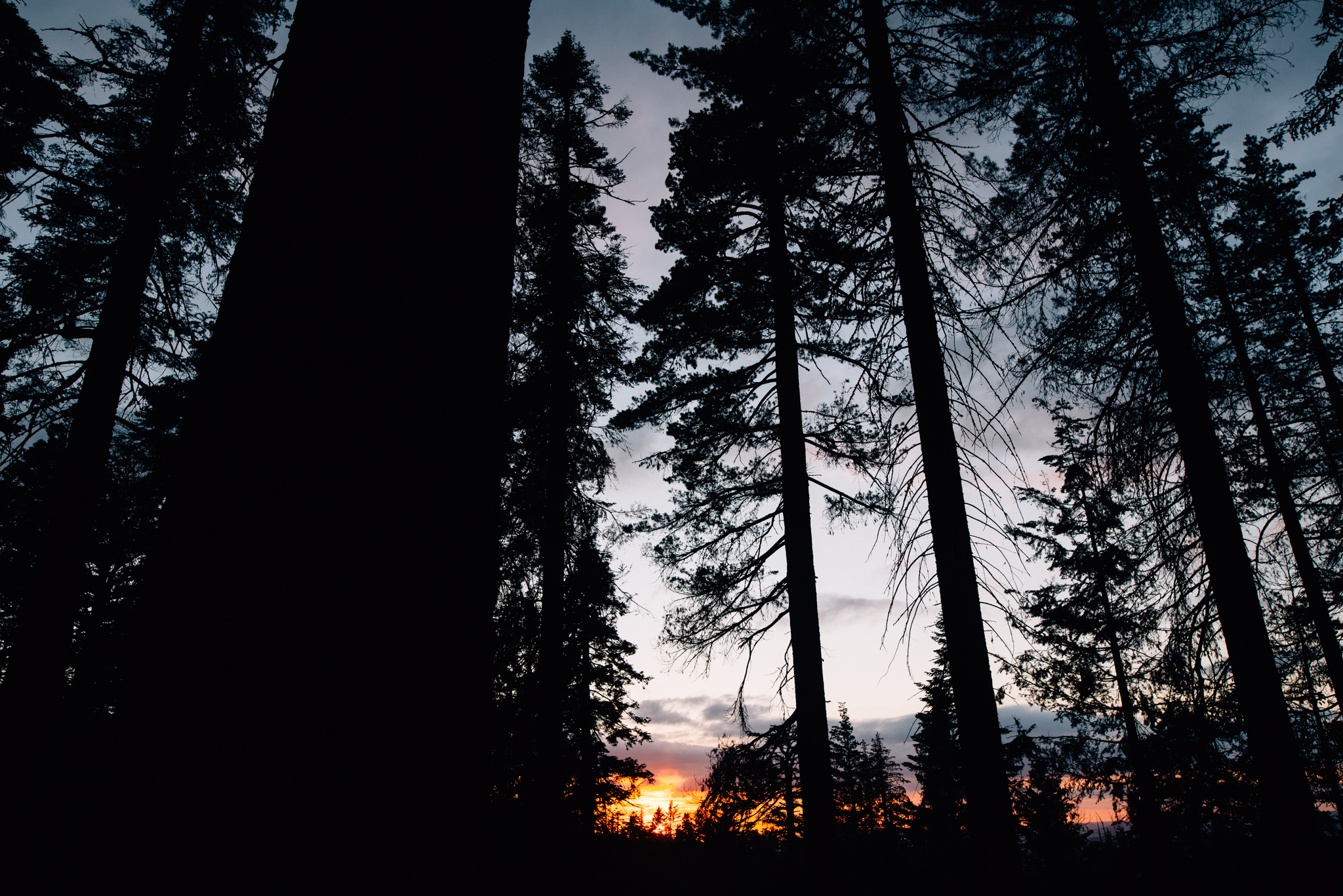 ©The Ryans Photography - Los Angeles Travel - Tuolomne Meadows Yosemite-044.jpg