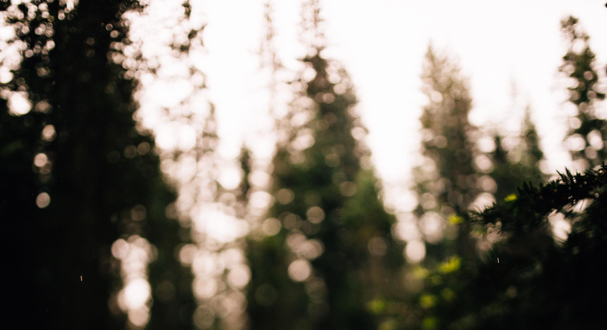 ©The Ryans Photography - Los Angeles Travel - Yosemite-002.jpg
