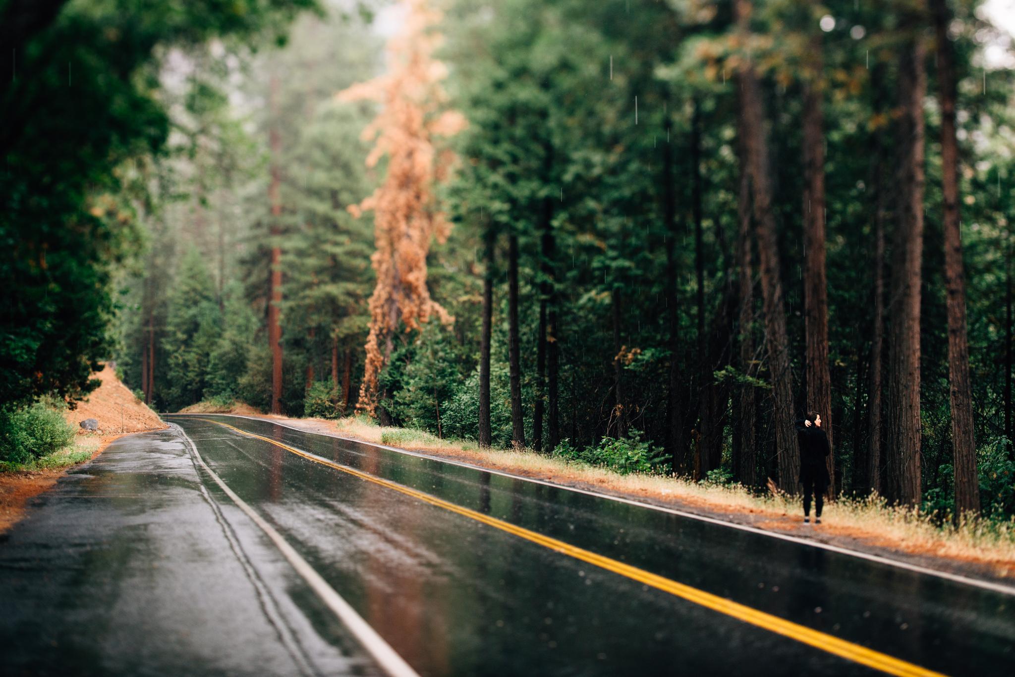 ©The Ryans Photography - Los Angeles Travel - Yosemite-005.jpg