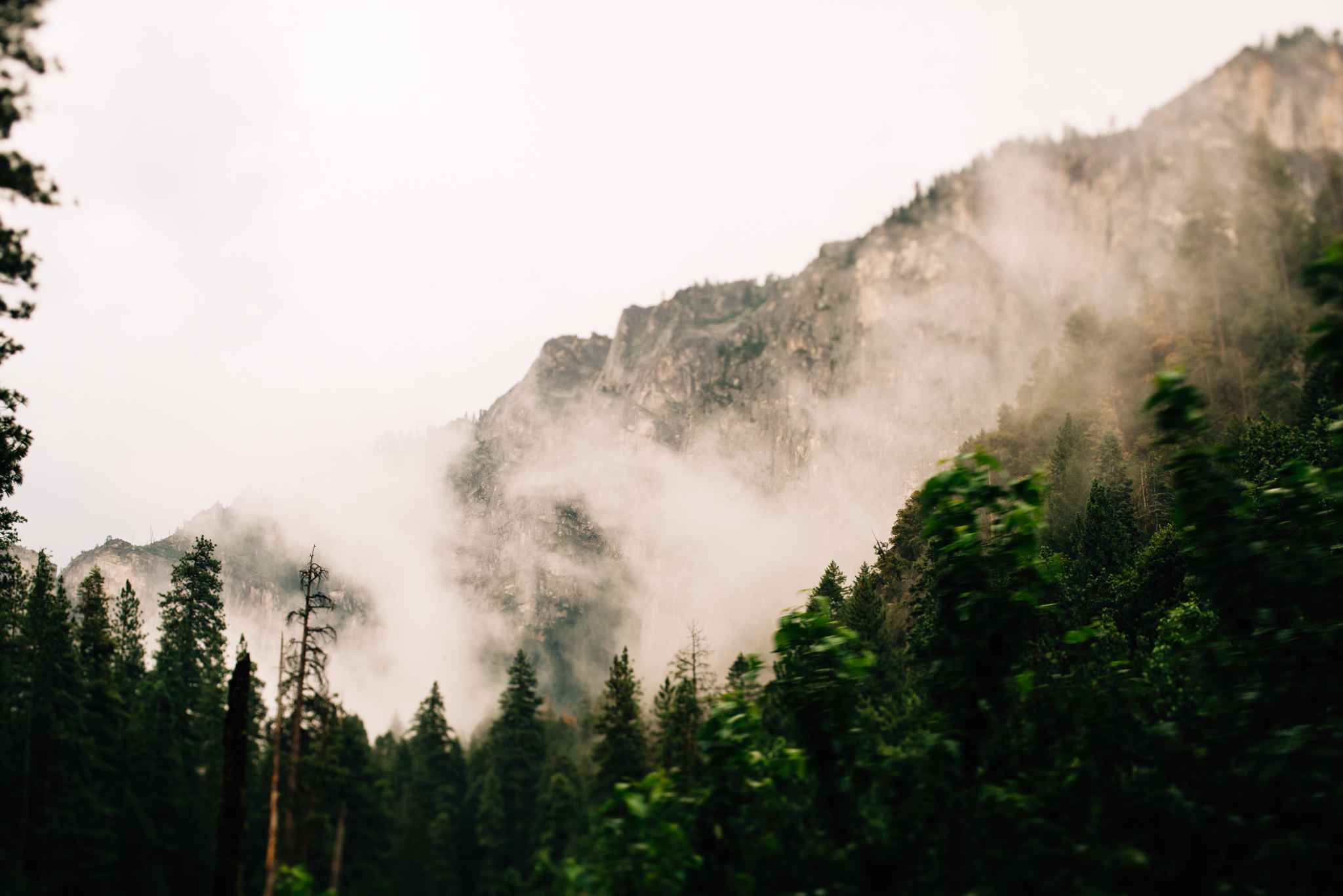 ©The Ryans Photography - Los Angeles Travel - Yosemite-008.jpg