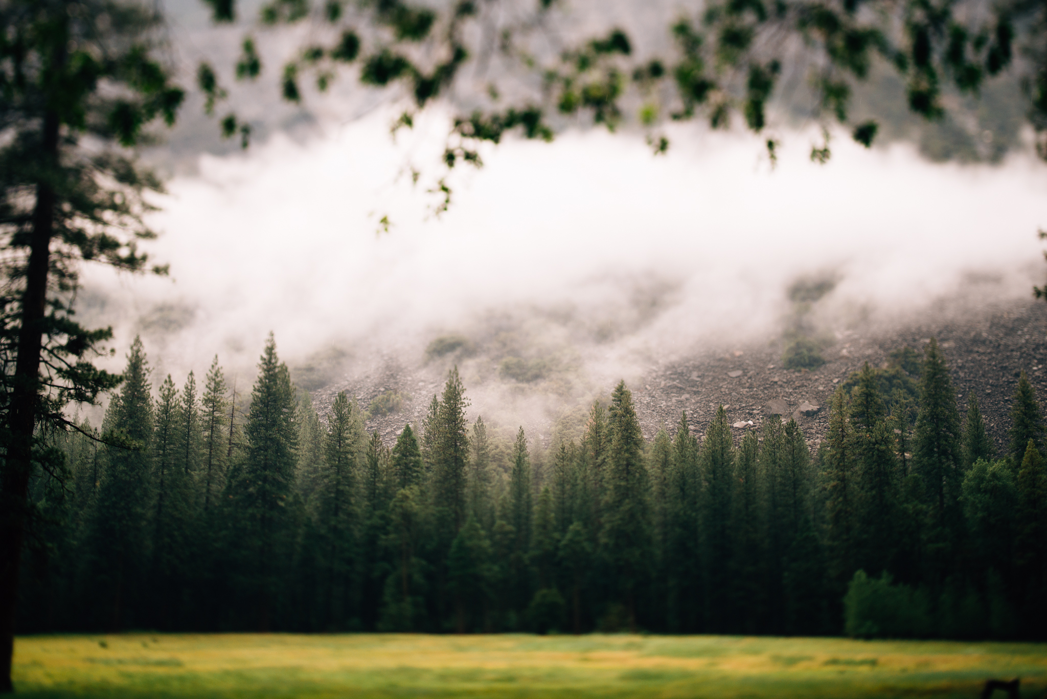 ©The Ryans Photography - Los Angeles Travel - Yosemite-011.jpg
