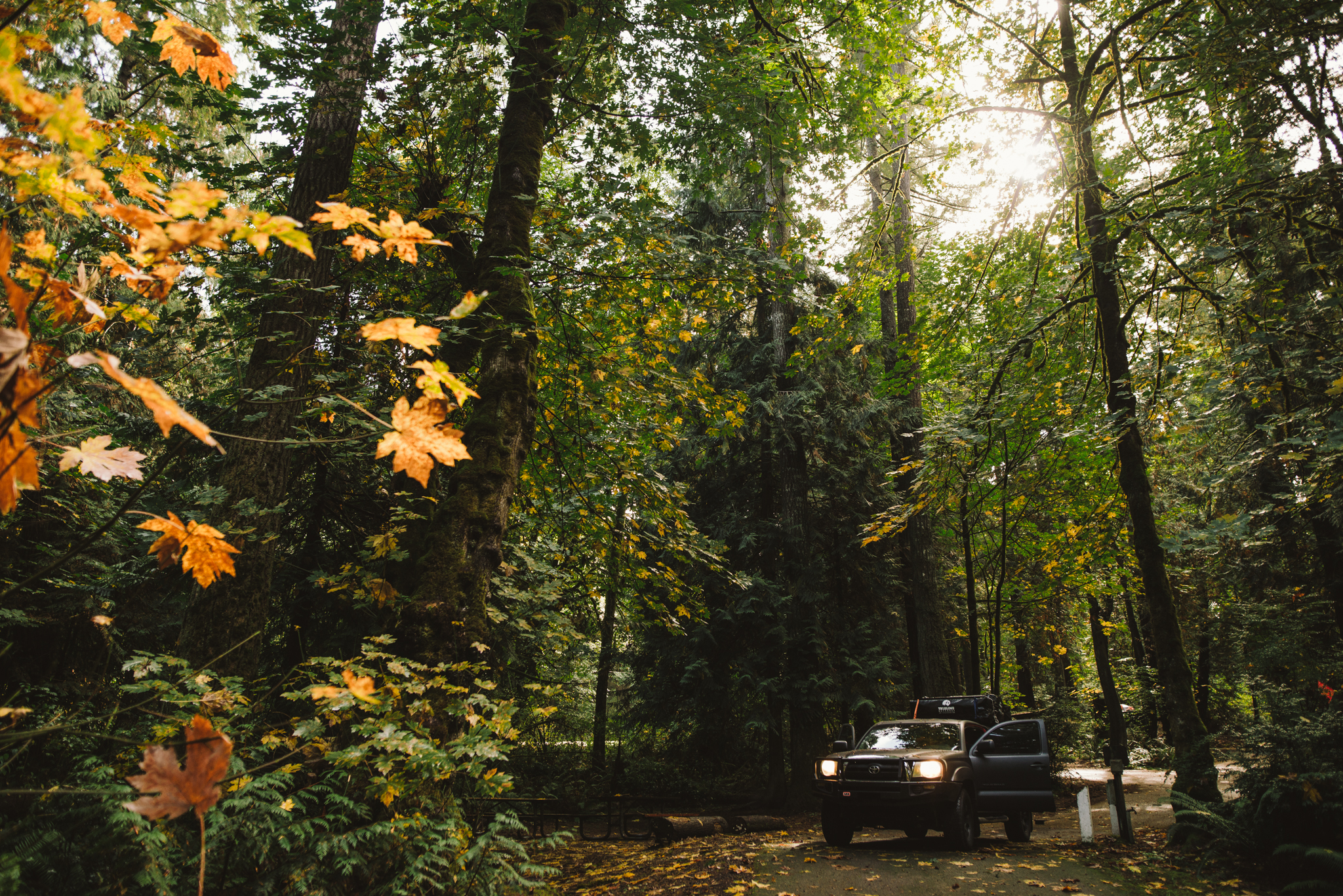 ©The Ryans Photography - Oregon Santiam Forest Lifestyle-008.jpg