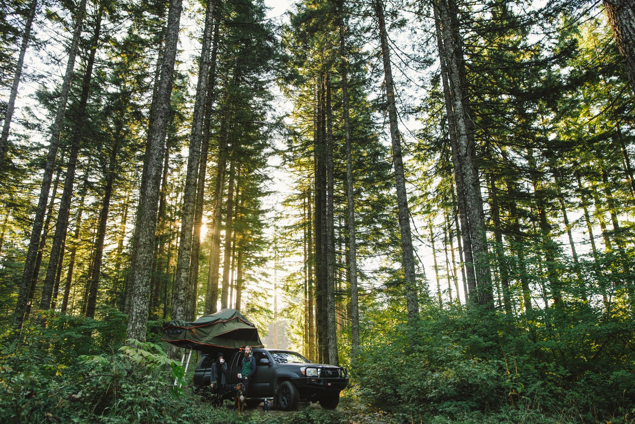 ©The Ryans Photography - Oregon Santiam Forest Lifestyle-010.jpg