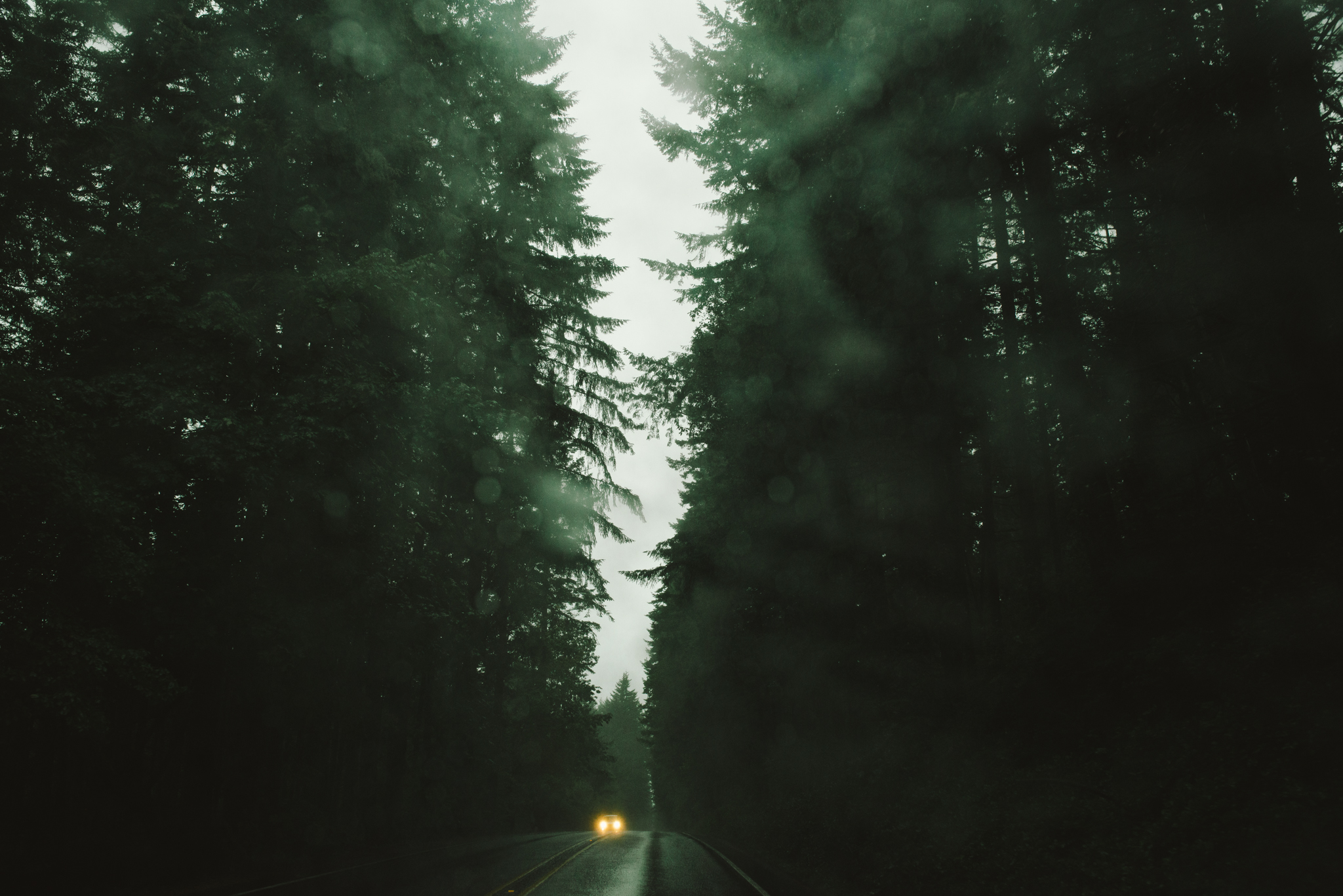 The Ryans Photography - Washington Drizzling Camping Adventure-008.jpg