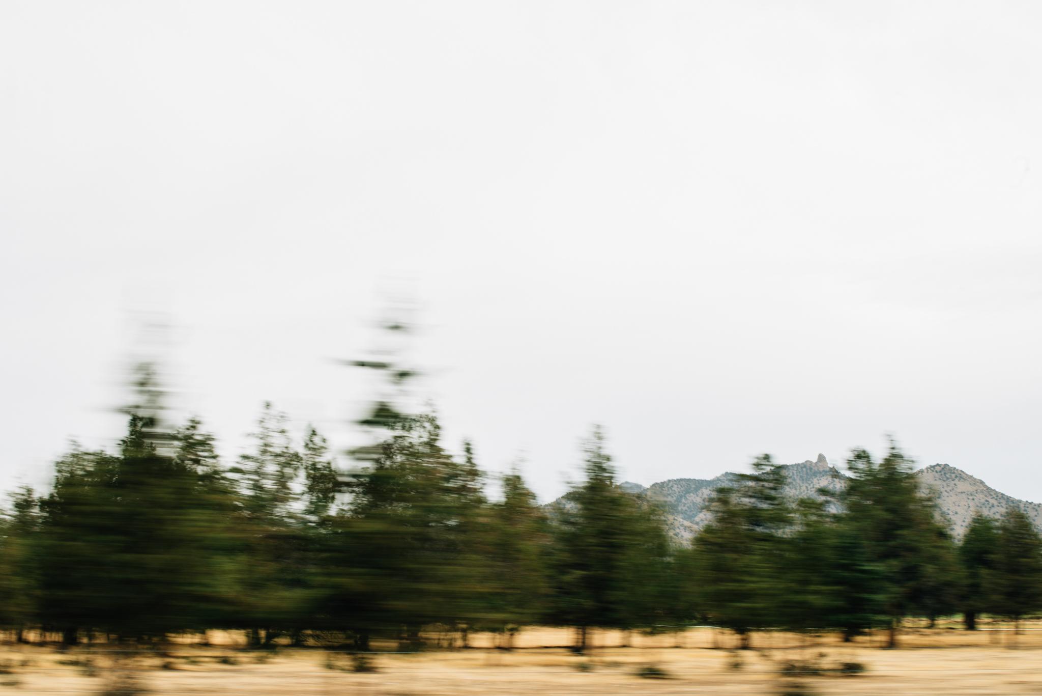 The Ryans Photography - Smith Rock, Oregon Adventure-001.jpg