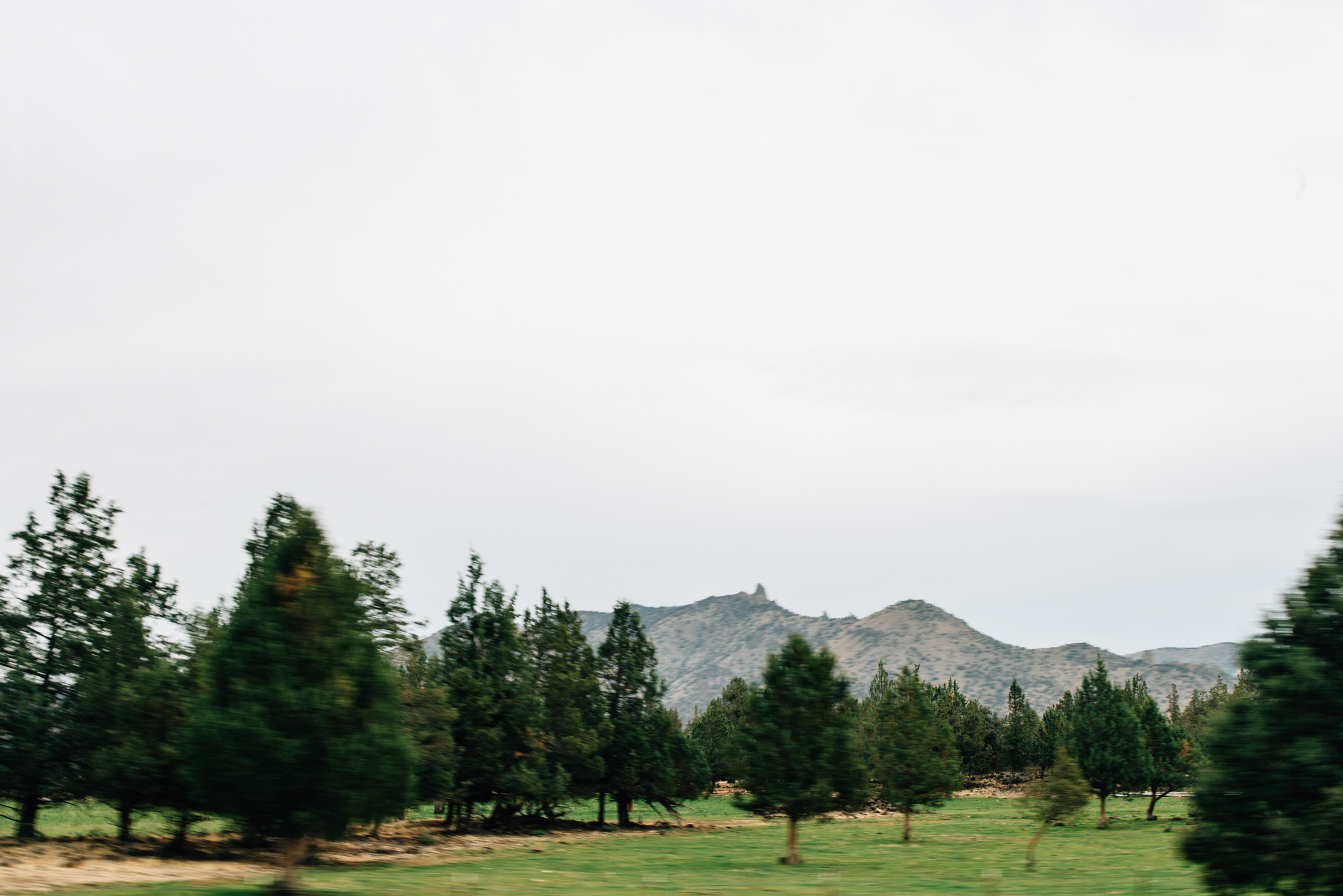 The Ryans Photography - Mt. Hood Oregon Adventure-002.jpg